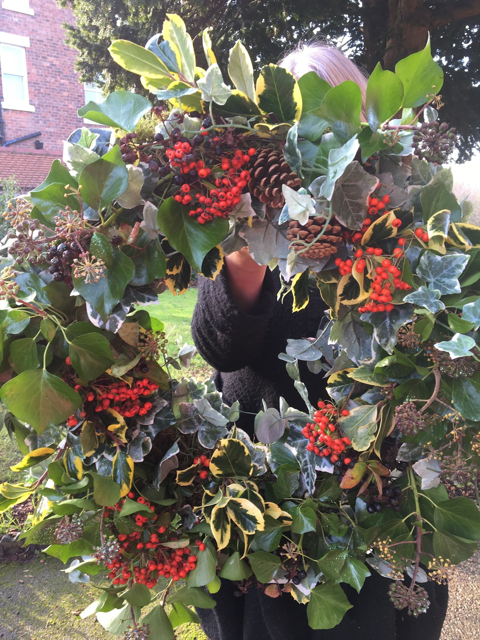 Christmas wreath. Variegated holly,flowering ivy, pyracantha and ...