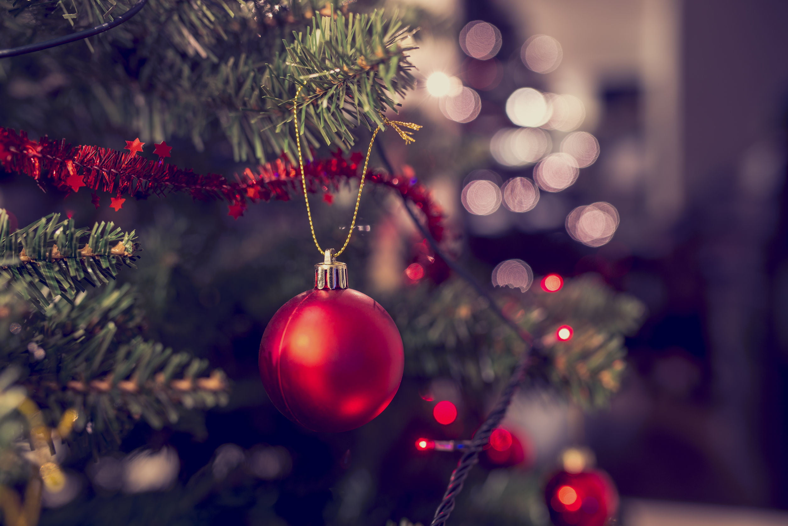 How Should You Recycle Your Christmas Tree This Year? | Digital Trends