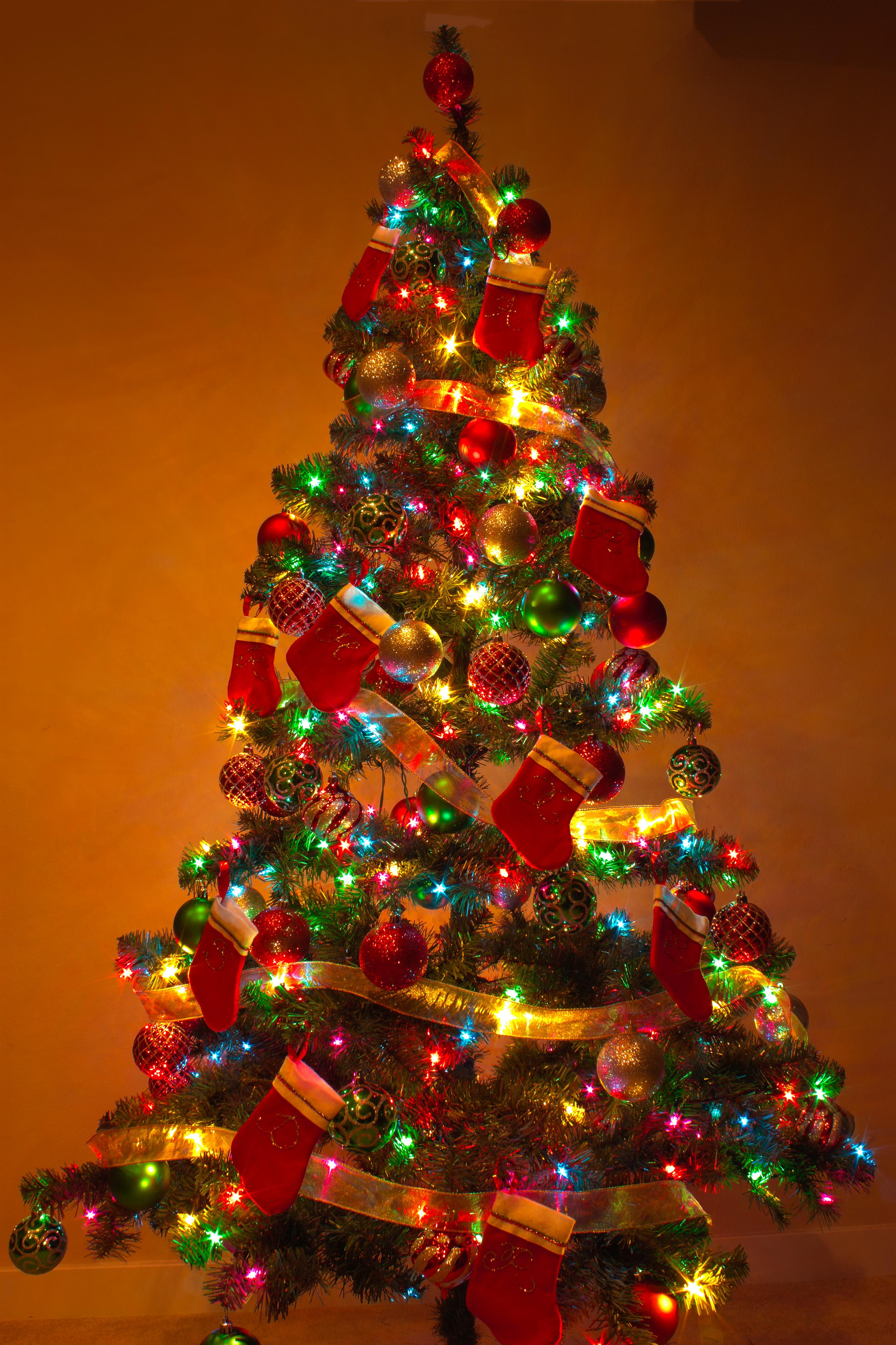 File:Y Christmas Tree 2.jpg - Wikimedia Commons