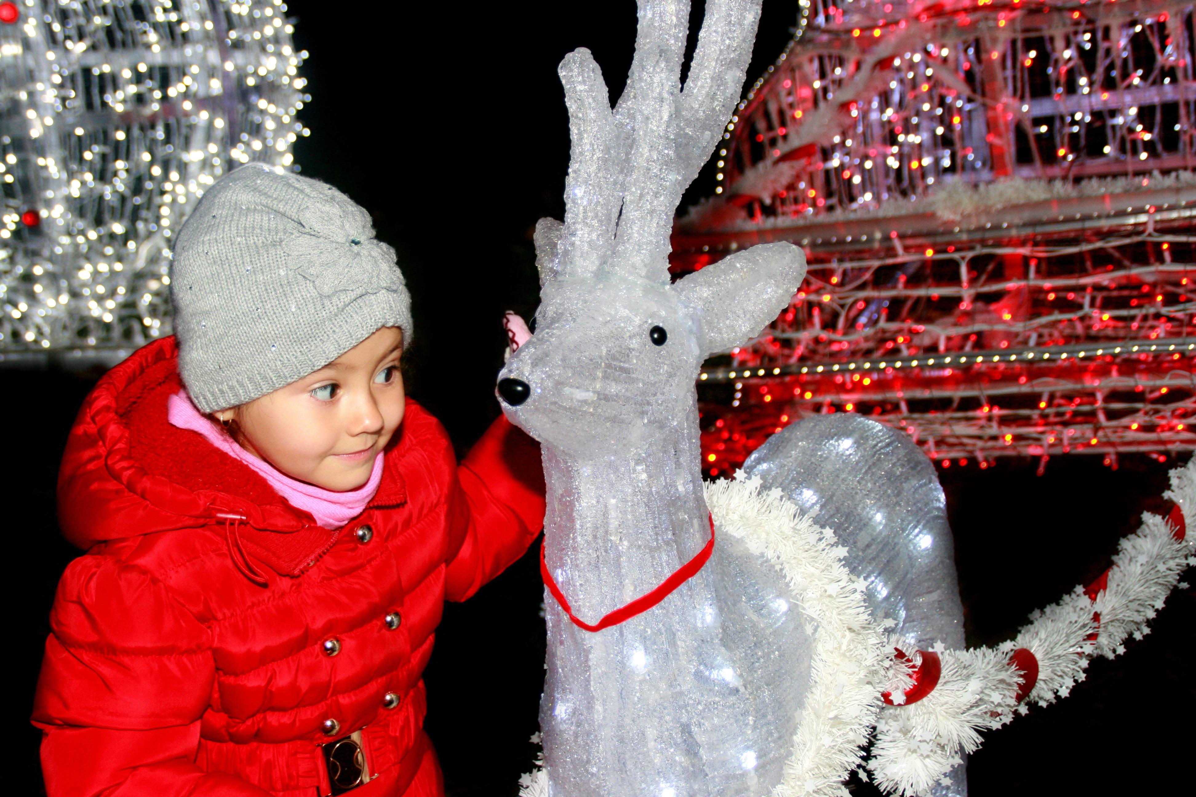 Christmas, Adorable, Child, Children, Girl, HQ Photo