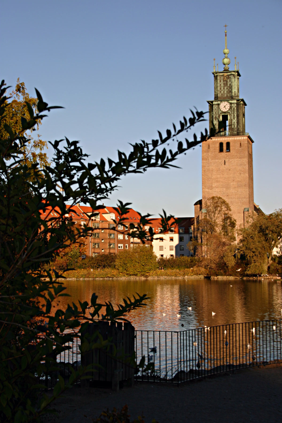 Church by the park, Church, City, Clock, Fence, HQ Photo