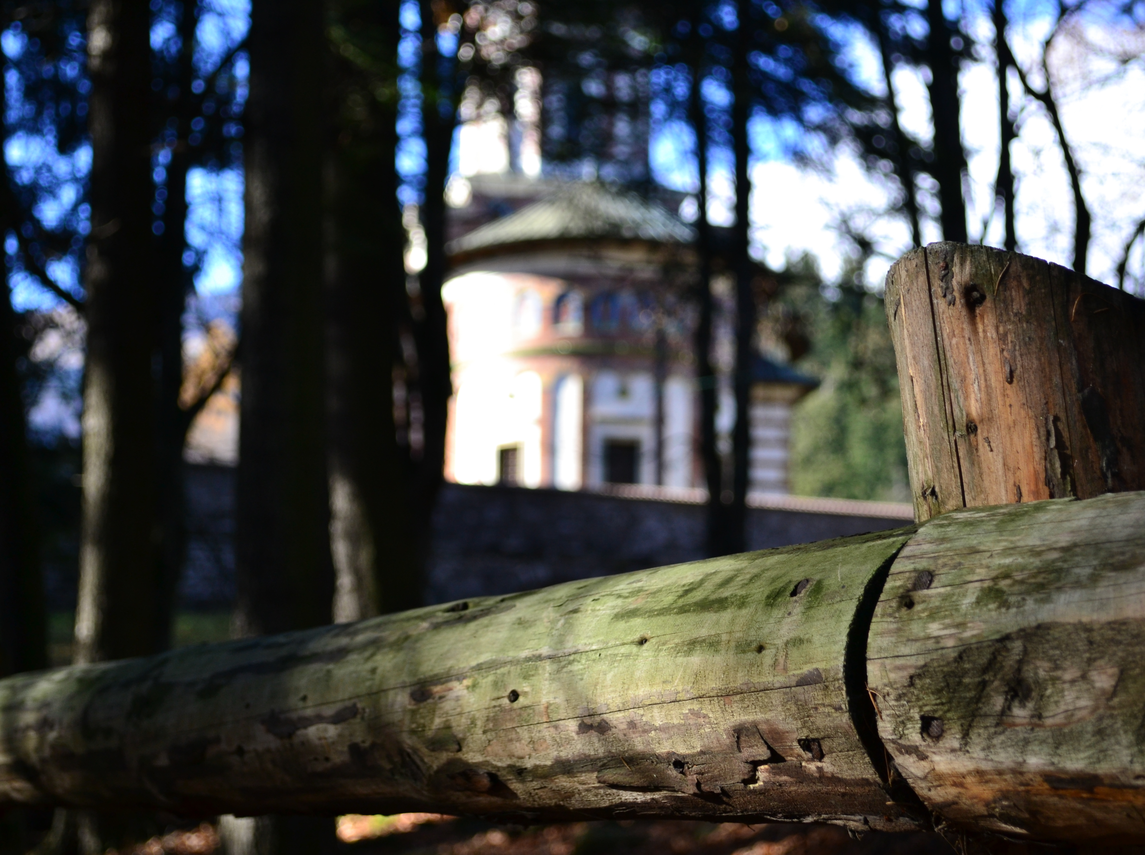Church in the forest photo