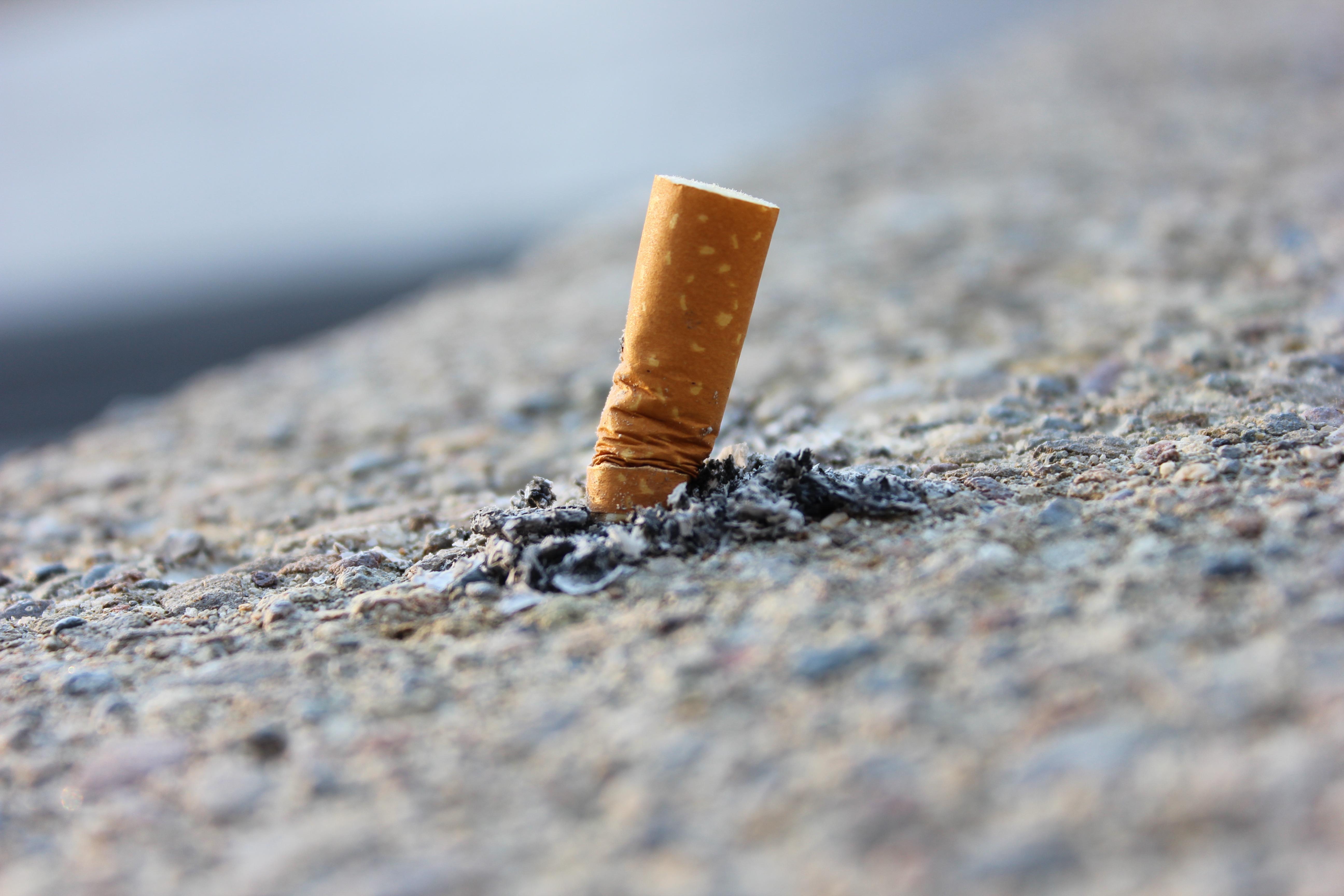 File:Cigarette Butt (26088883376).jpg - Wikimedia Commons
