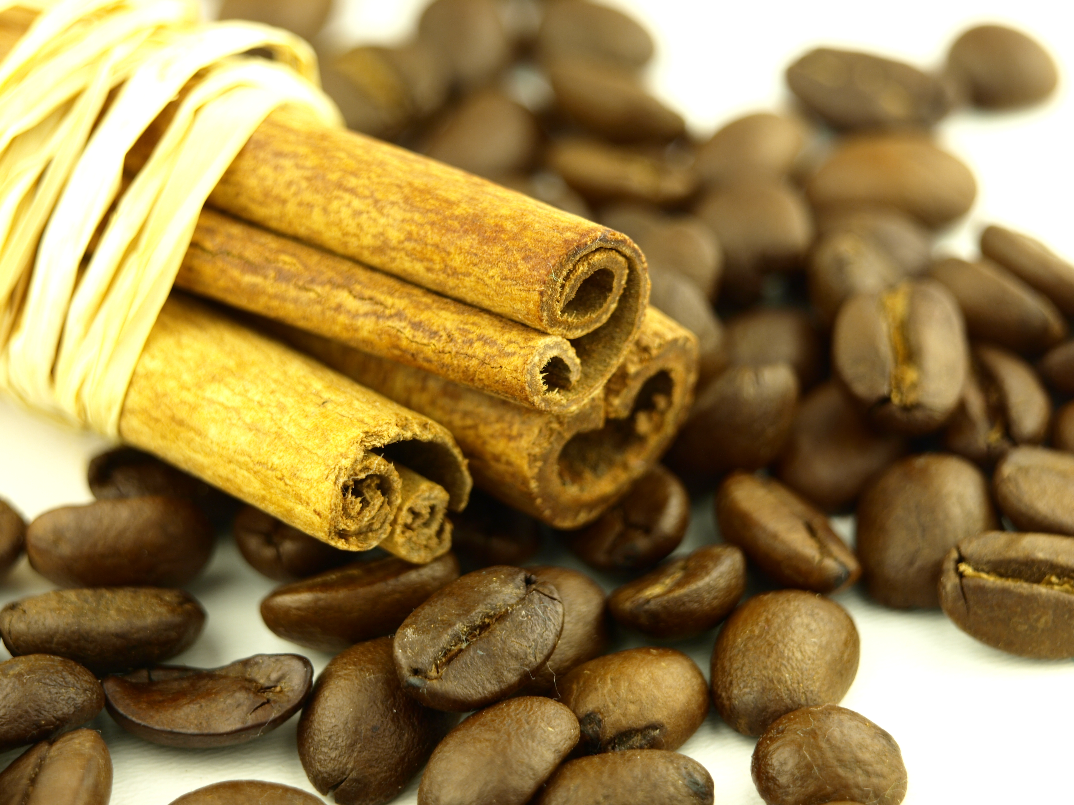 Cinnamon and coffee beans photo