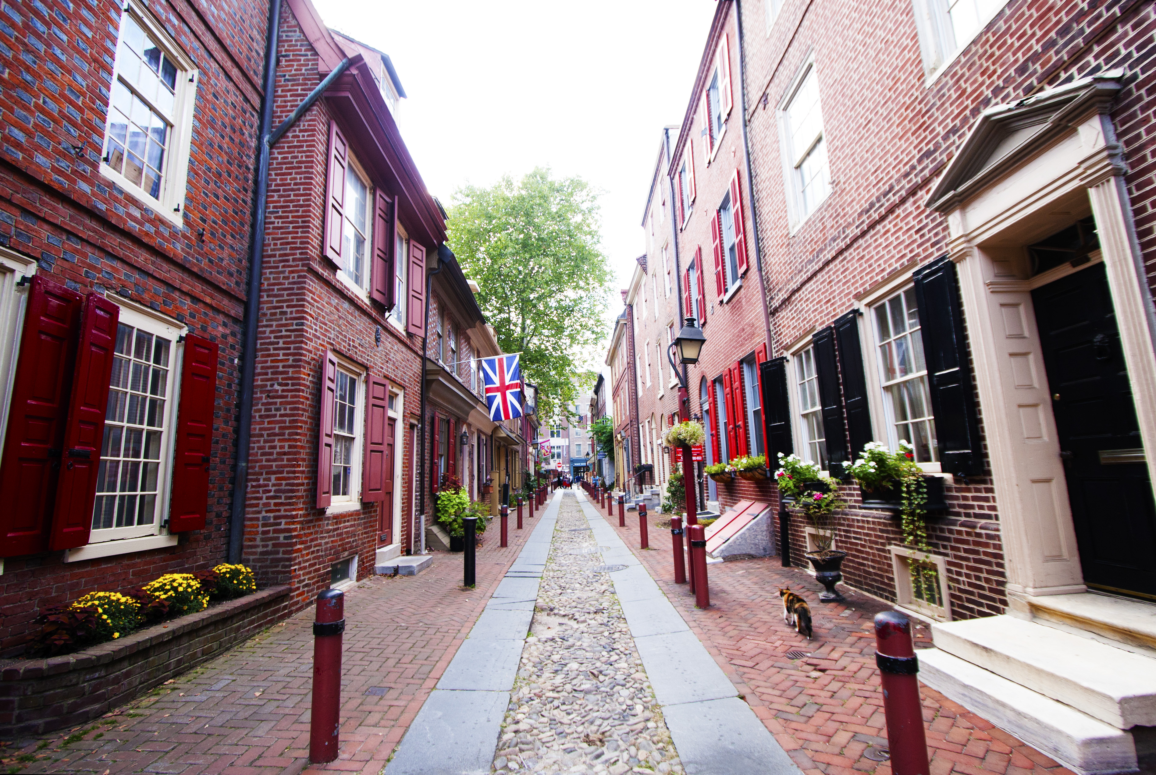 The 5 most beautiful streets in Philly - Curbed Philly