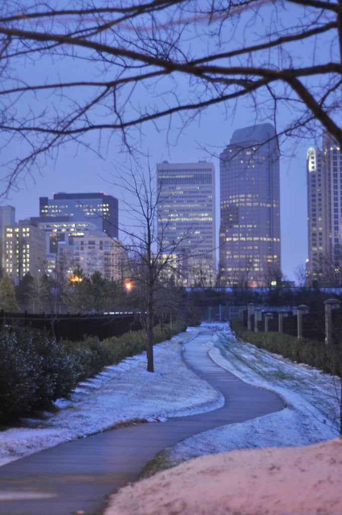 Cityscape of Uptown Charlotte, America, Night, White, Uptown, HQ Photo