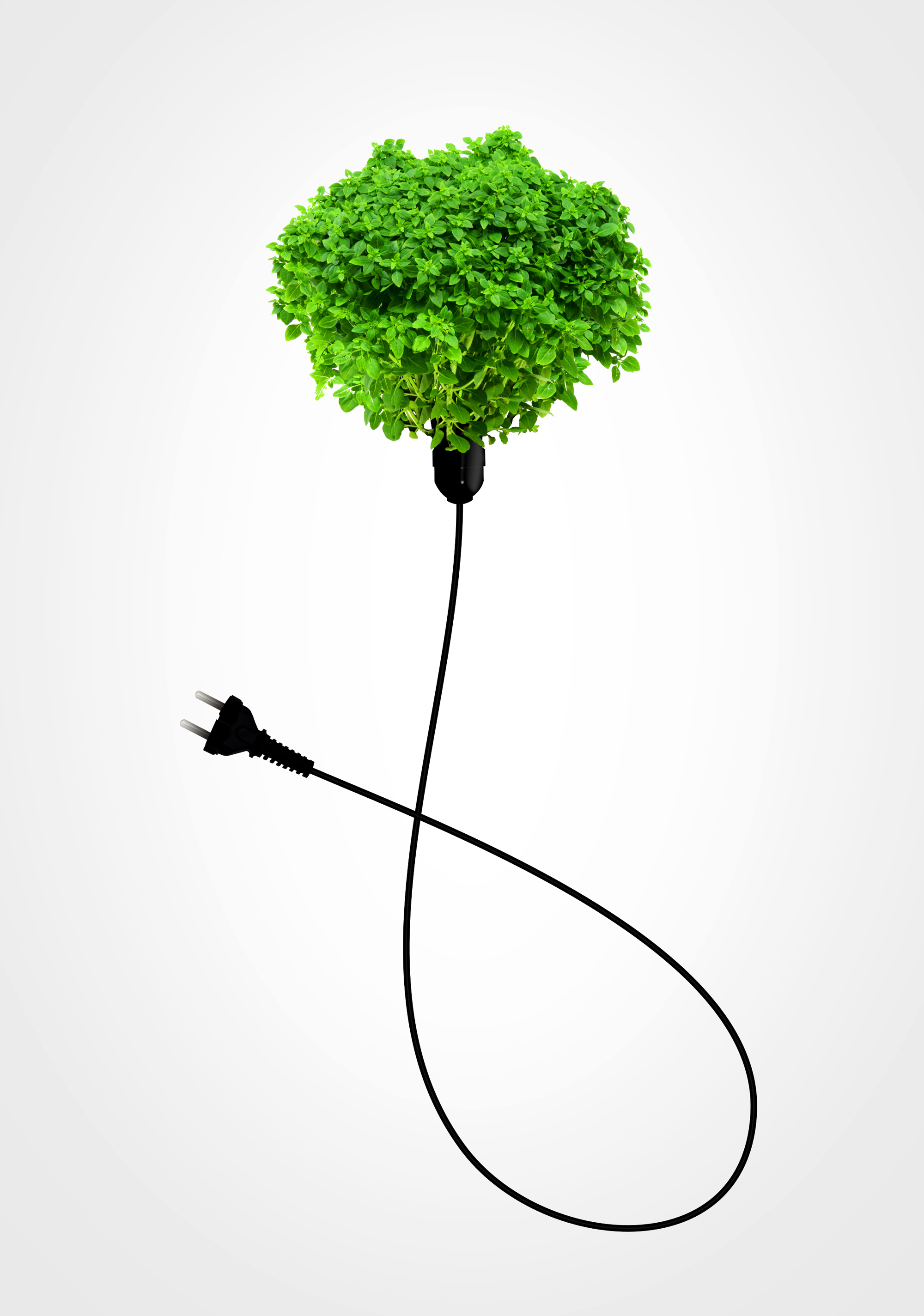 Clean energy concept - a green power plug on white photo