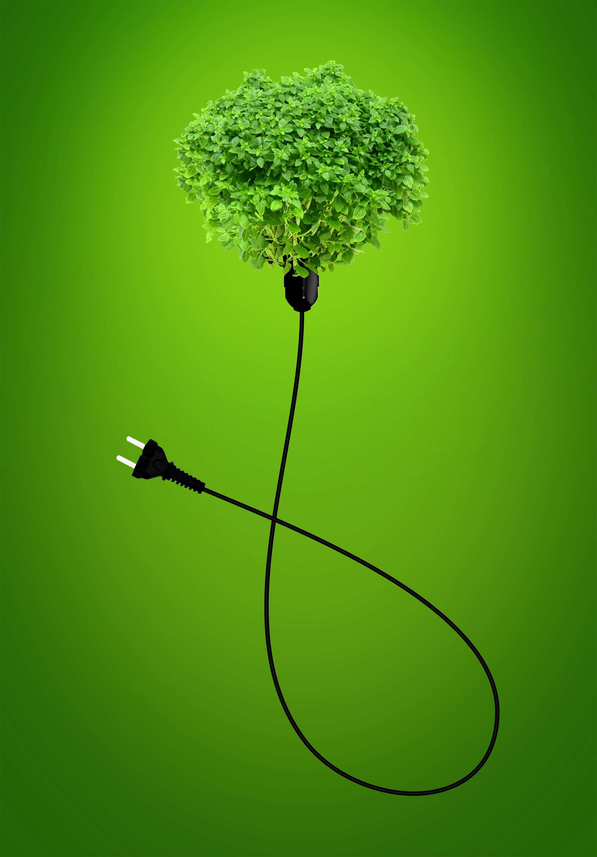 Clean energy concept - a green power plug photo