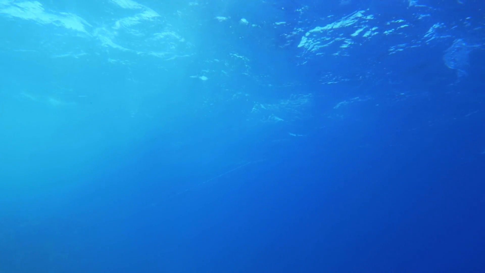 Slow motion of clear blue sea water. View from the depth. Wavy ...