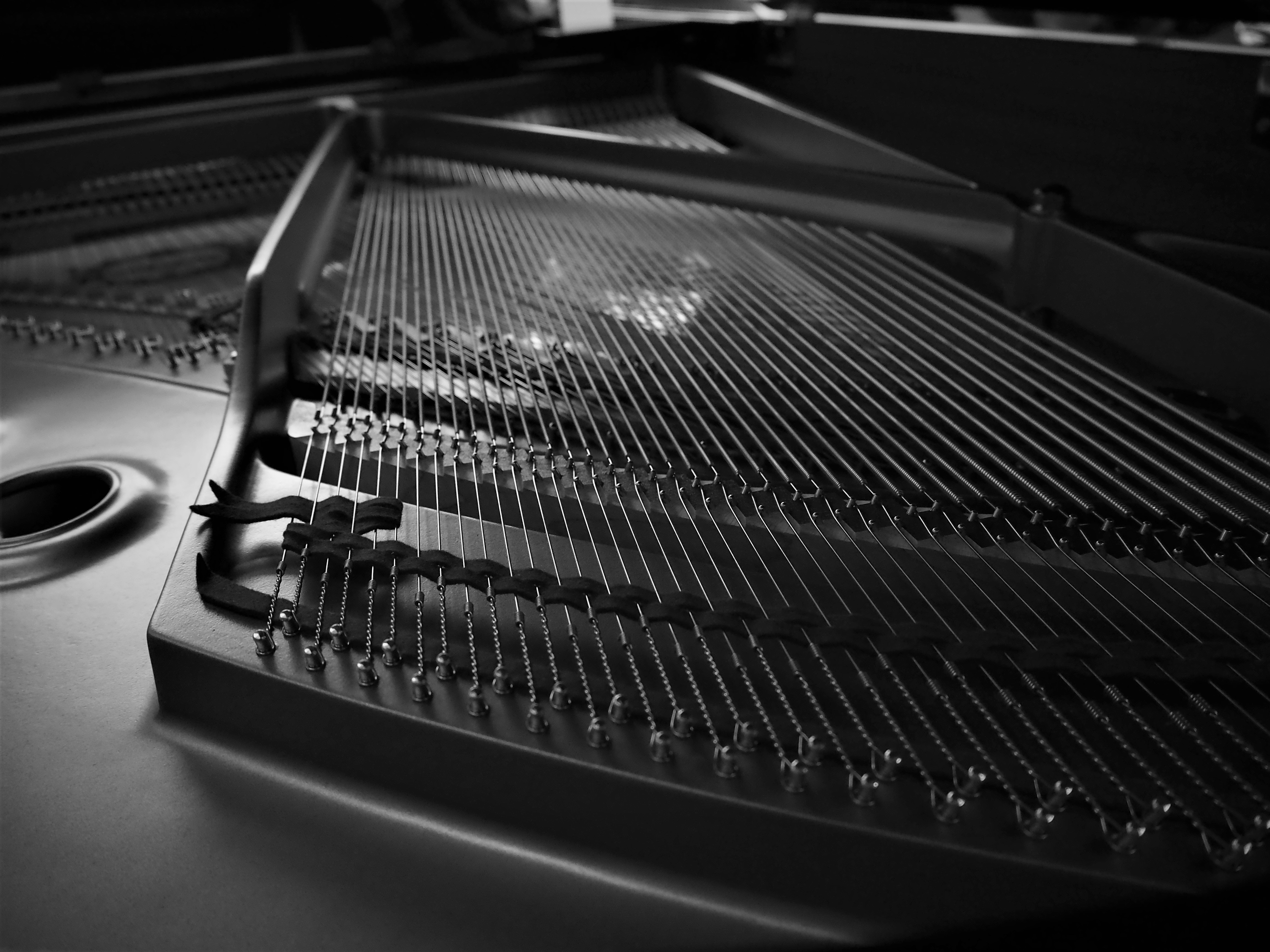 Close up of a musical instrument photo