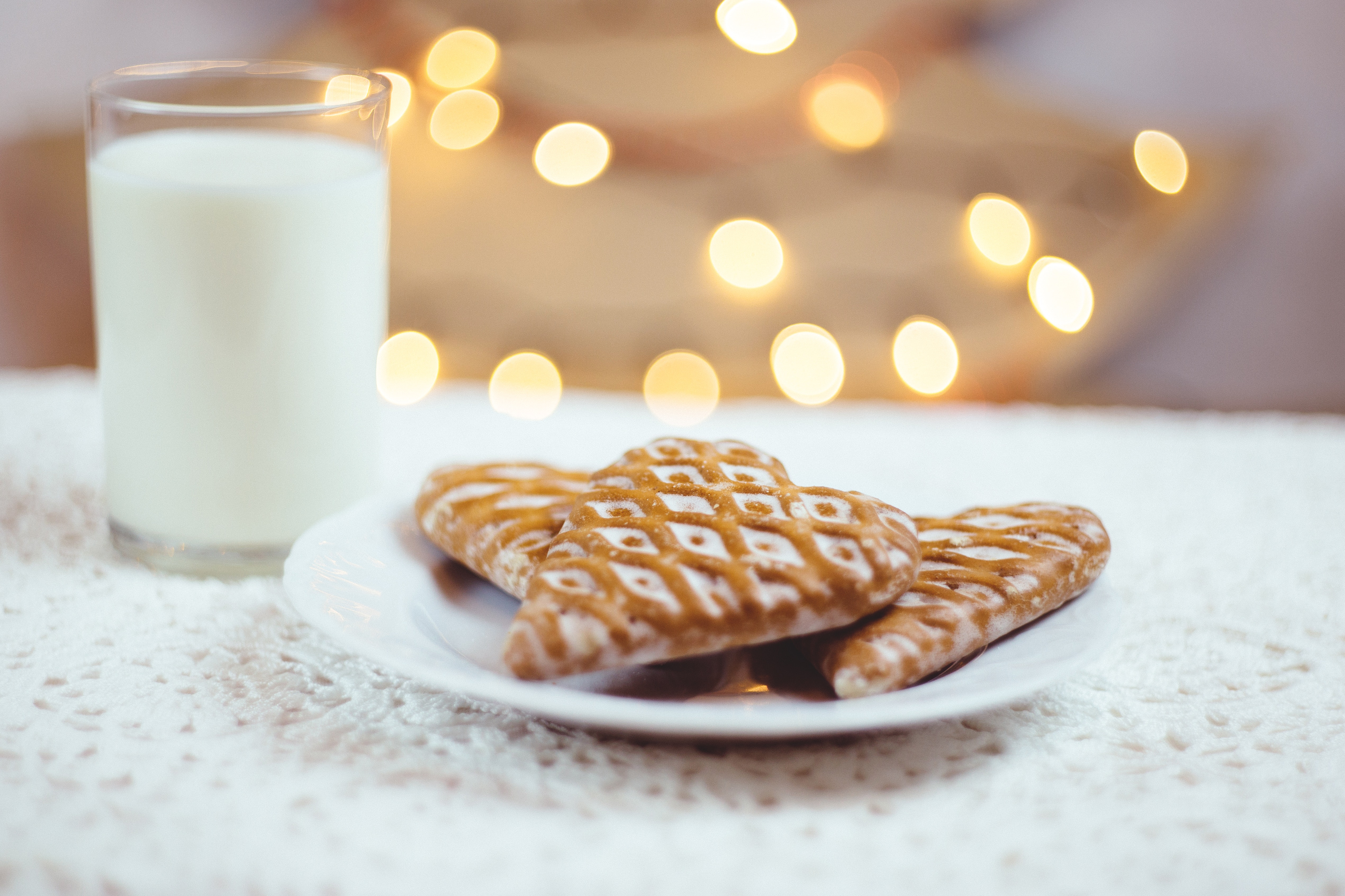 Close-up of Christmas Milk, Baked, Health, Sugar, Still life, HQ Photo
