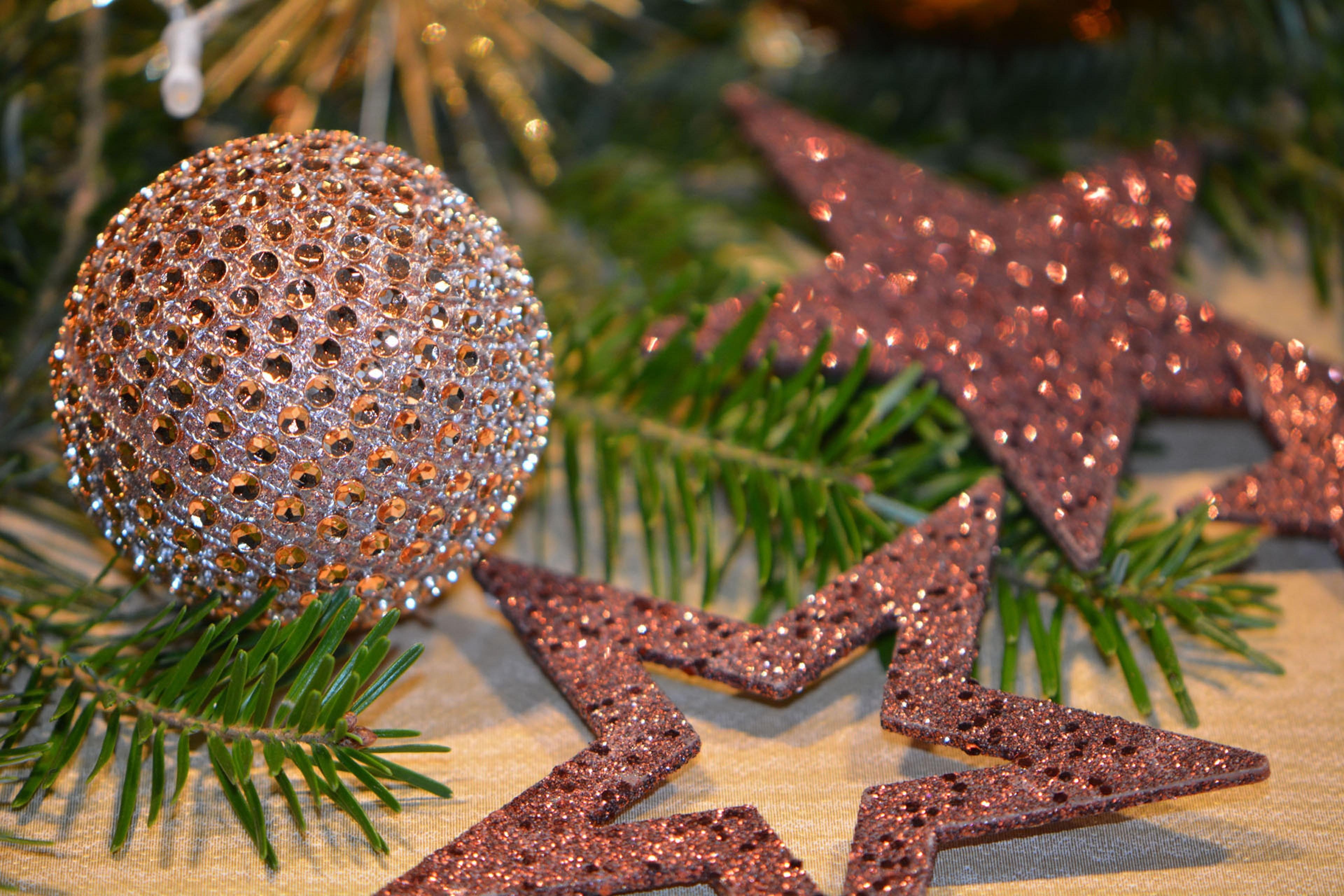 Close-up of Christmas Tree, Focus, Tree, Stars, Spruce, HQ Photo