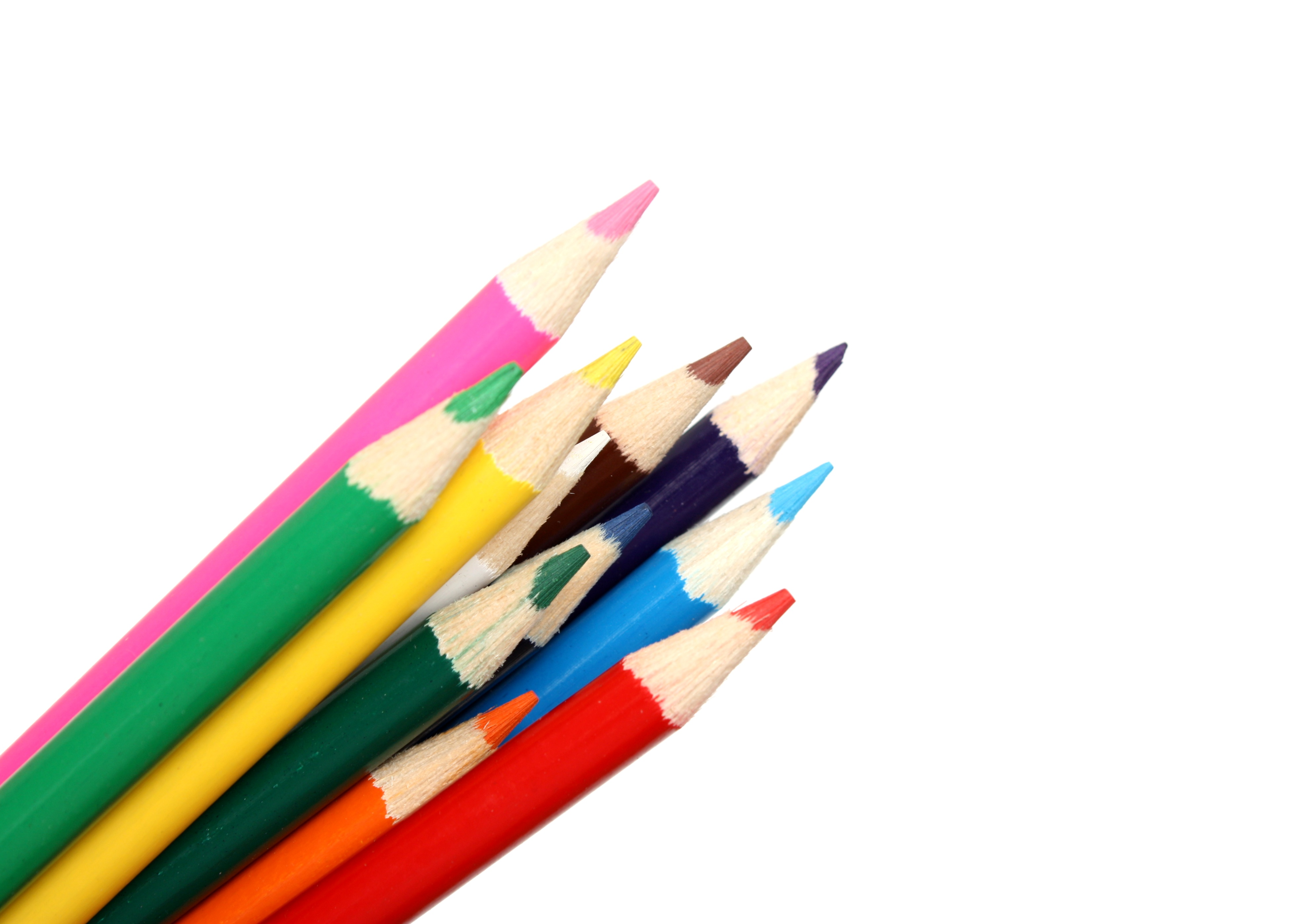 Close-up of colored pencils photo