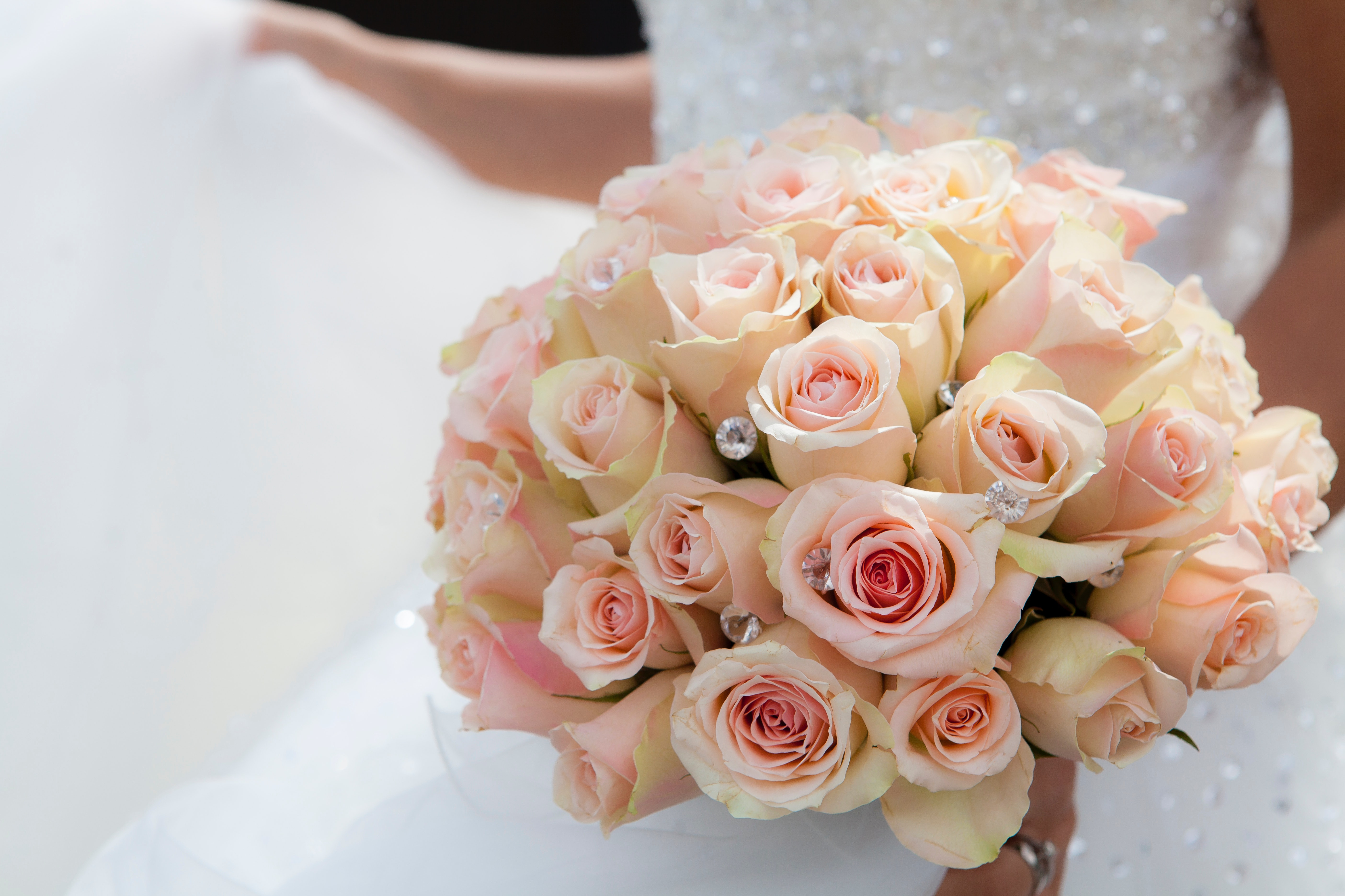Close-up of Pink Rose Bouquet, Beautiful, Flowers, Wedding, Romantic, HQ Photo