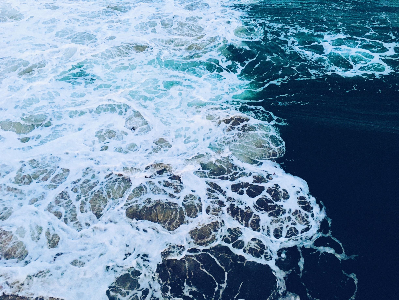 Close-up of sea foam photo