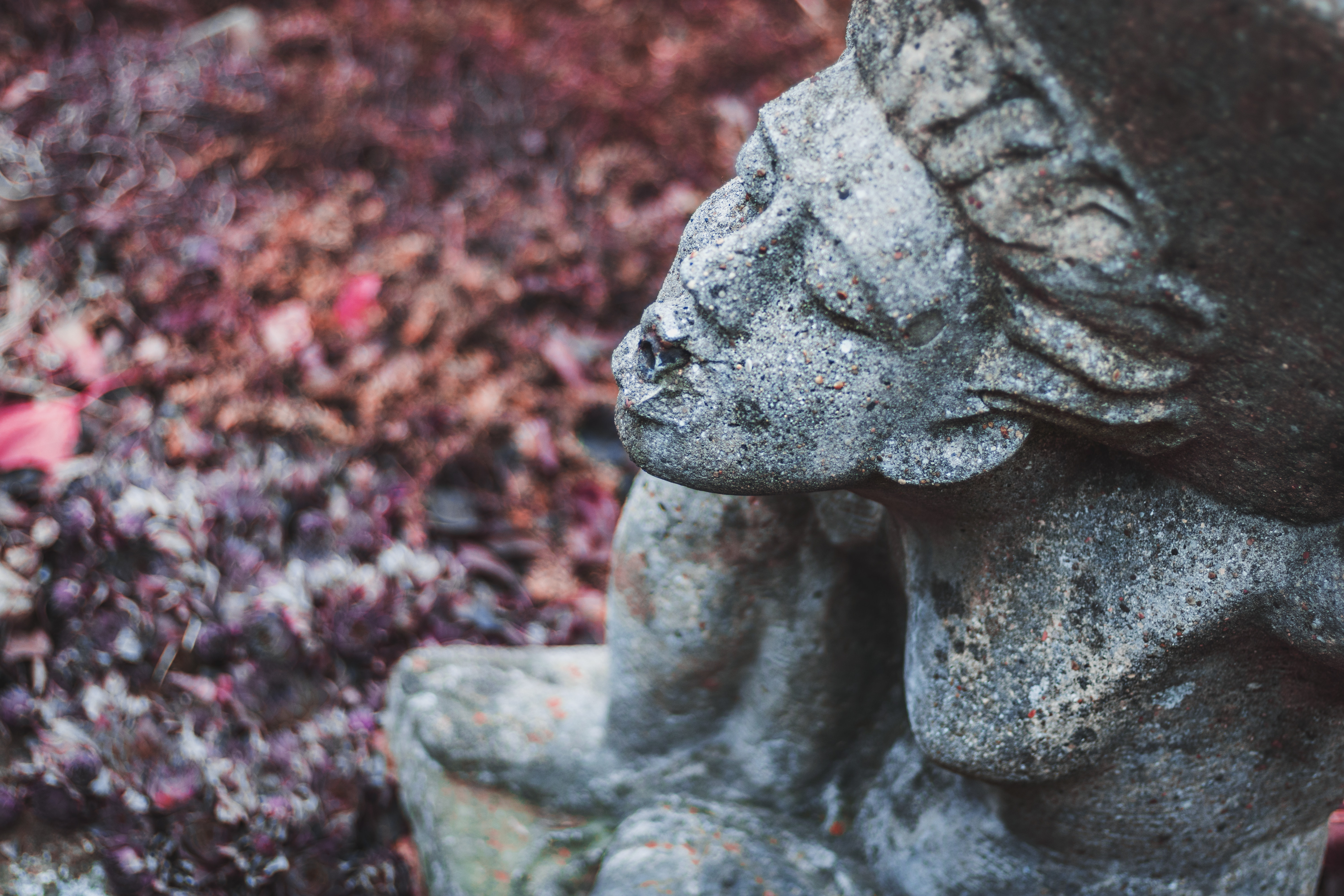 Close-up of Statue, Outdoors, Texture, Stone, Statue, HQ Photo