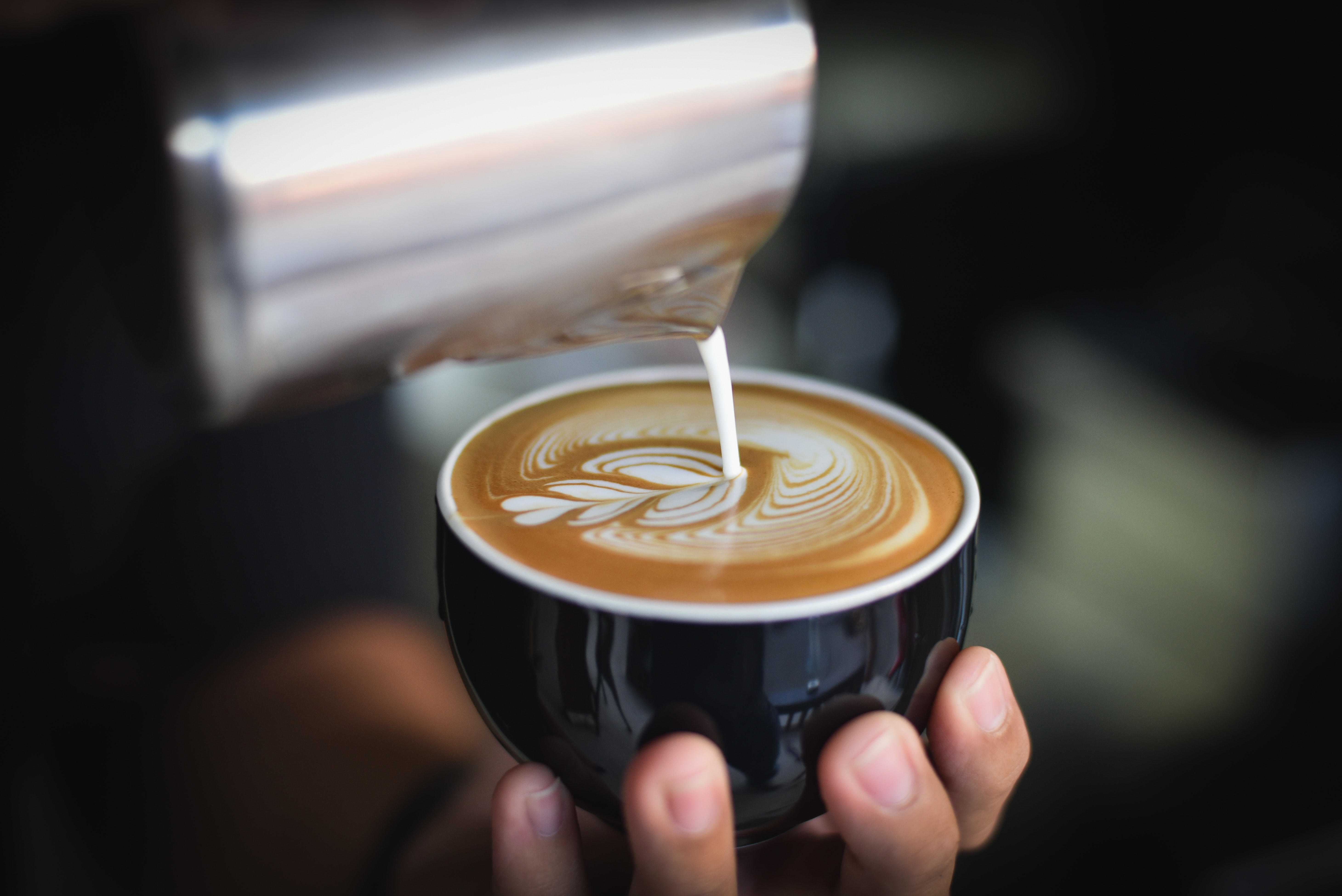 Close-up of Woman Holding Coffee Cup at Cafe, Aroma, Kettle, Foam, Focus, HQ Photo
