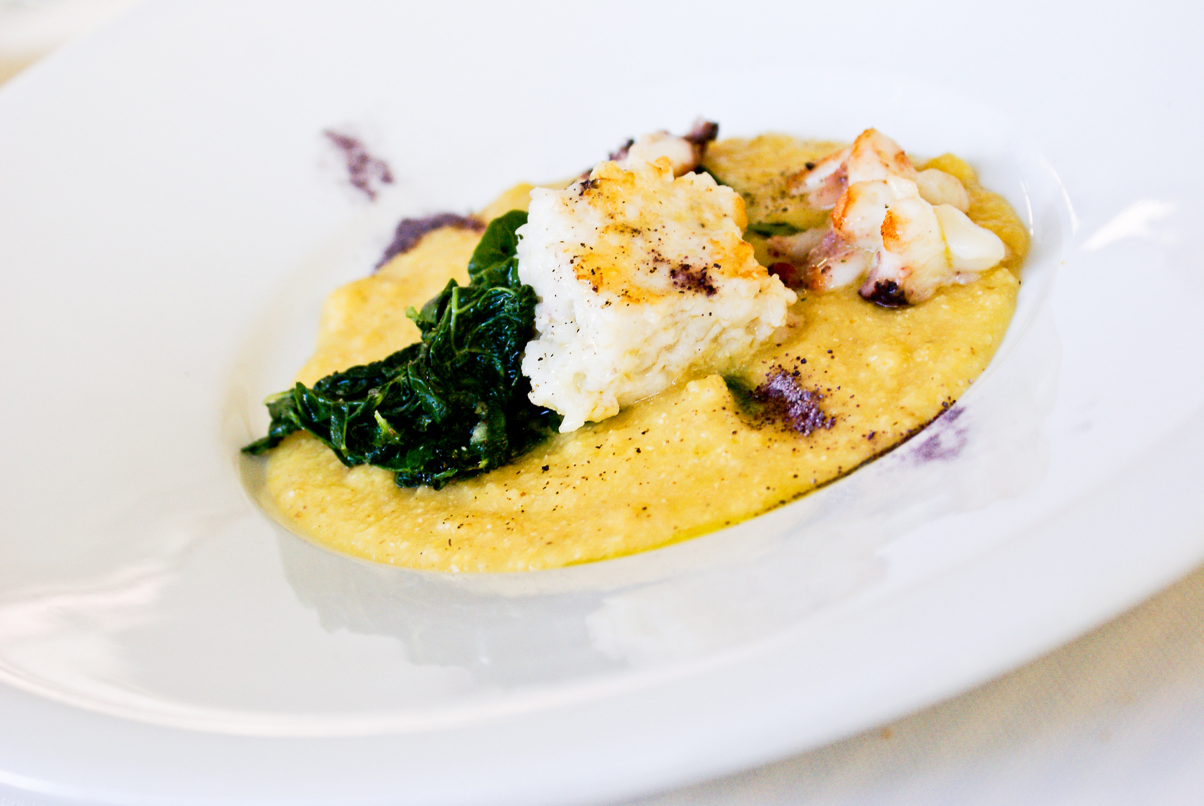 Close Up Photo of Risotto Dish, Cooking, Tasty, Sauce, Restaurant, HQ Photo