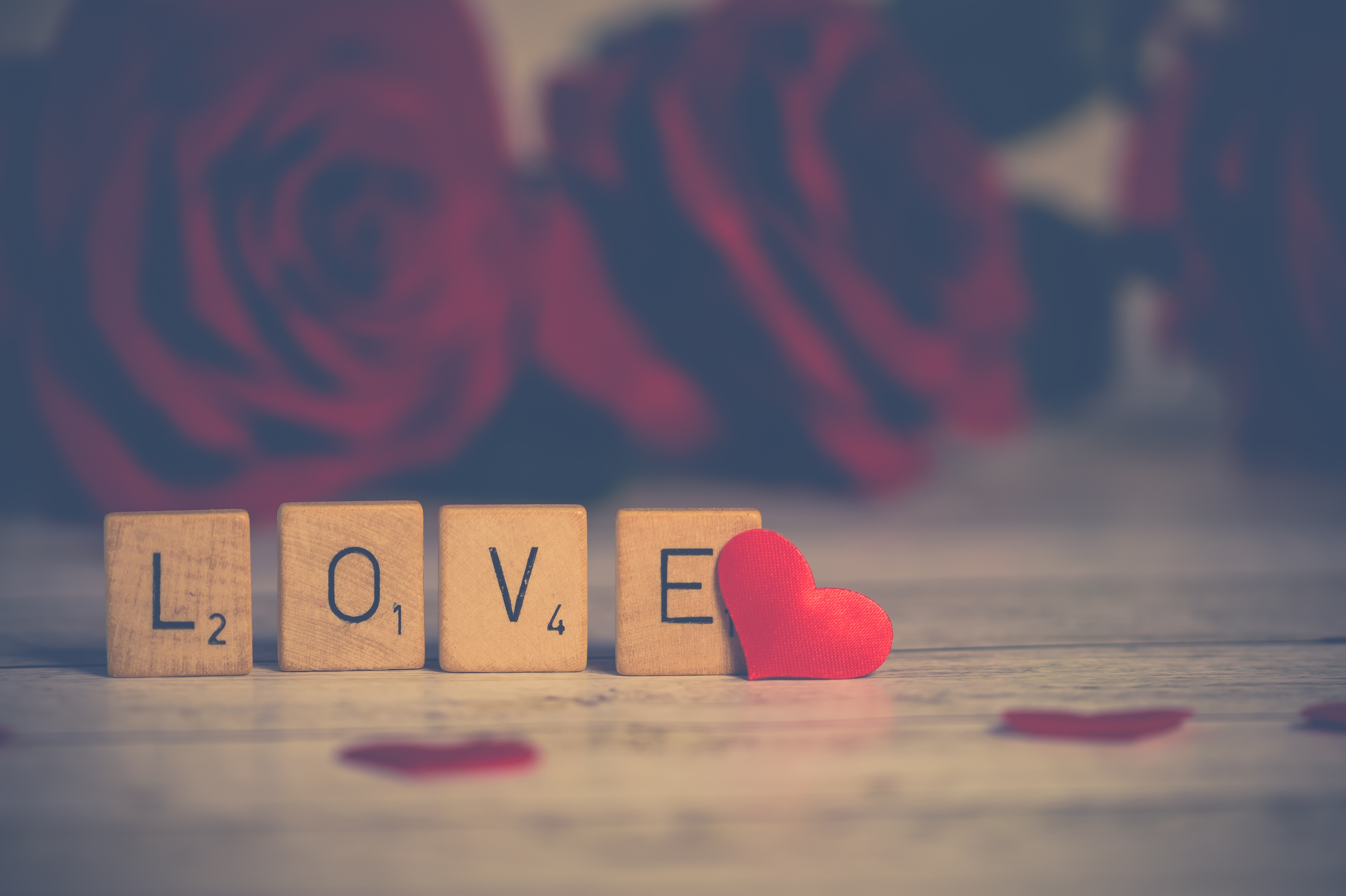 Close-up Photo of Wooden Scrabble Tiles Near Heart, Red roses, Wood, Text, Symbol, HQ Photo