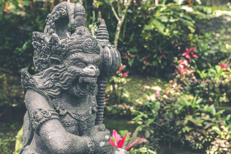 Close up photography hindu deity