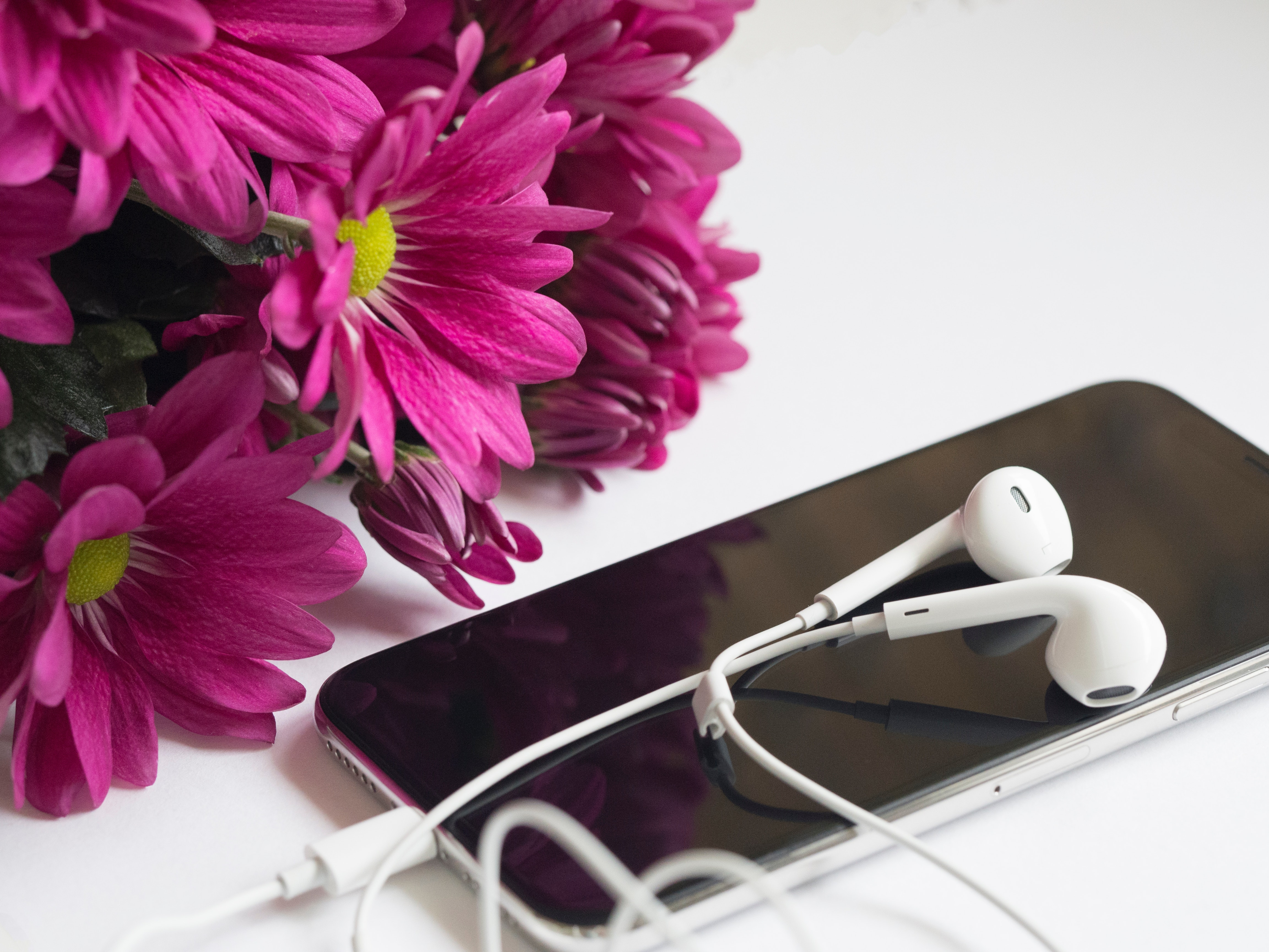 Close-Up Photography of Earphones on Top of Iphone 6 Near Flowers, Modern, Mobile phone, Mobile, Iphone, HQ Photo