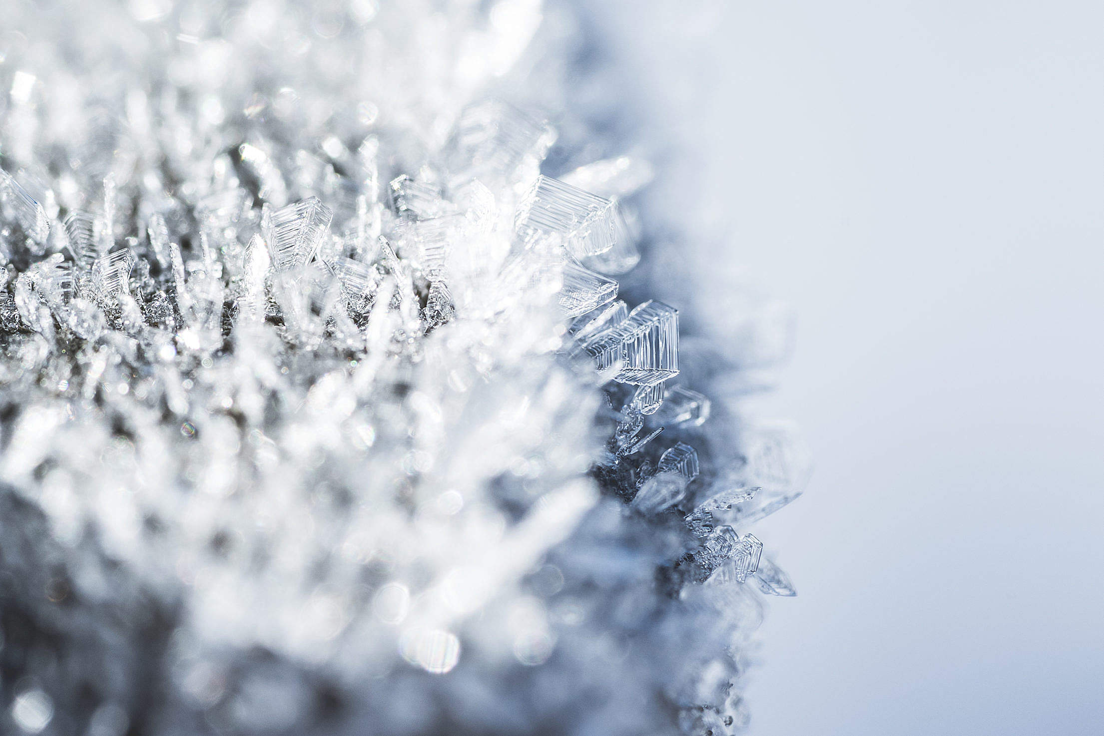 Morning Hoar Frost Frozen Snowflakes Close Up Free Stock Photo ...