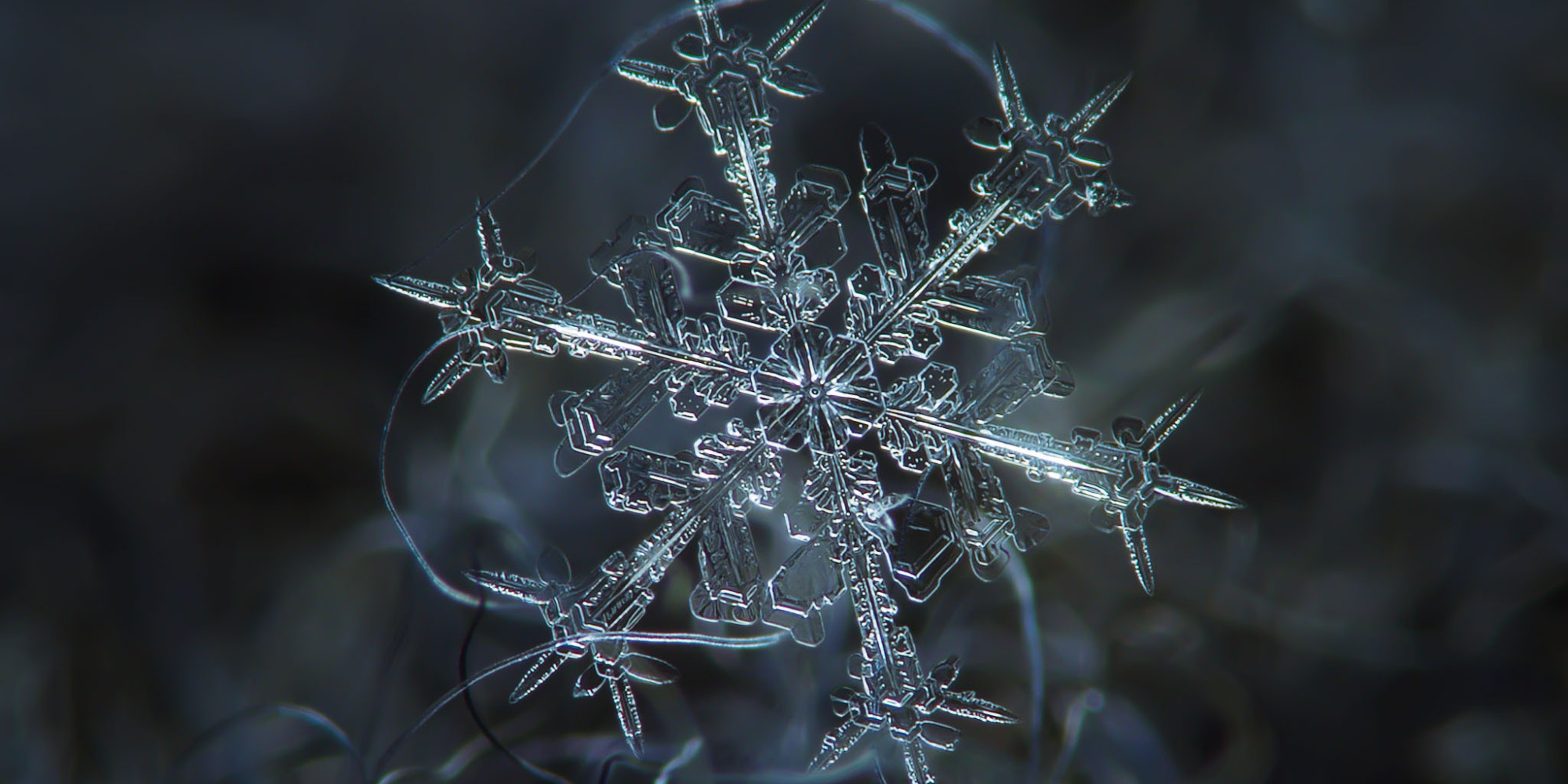 Unbelievable Close-Up Photos Of Snowflakes Reveal A Side Of Winter ...