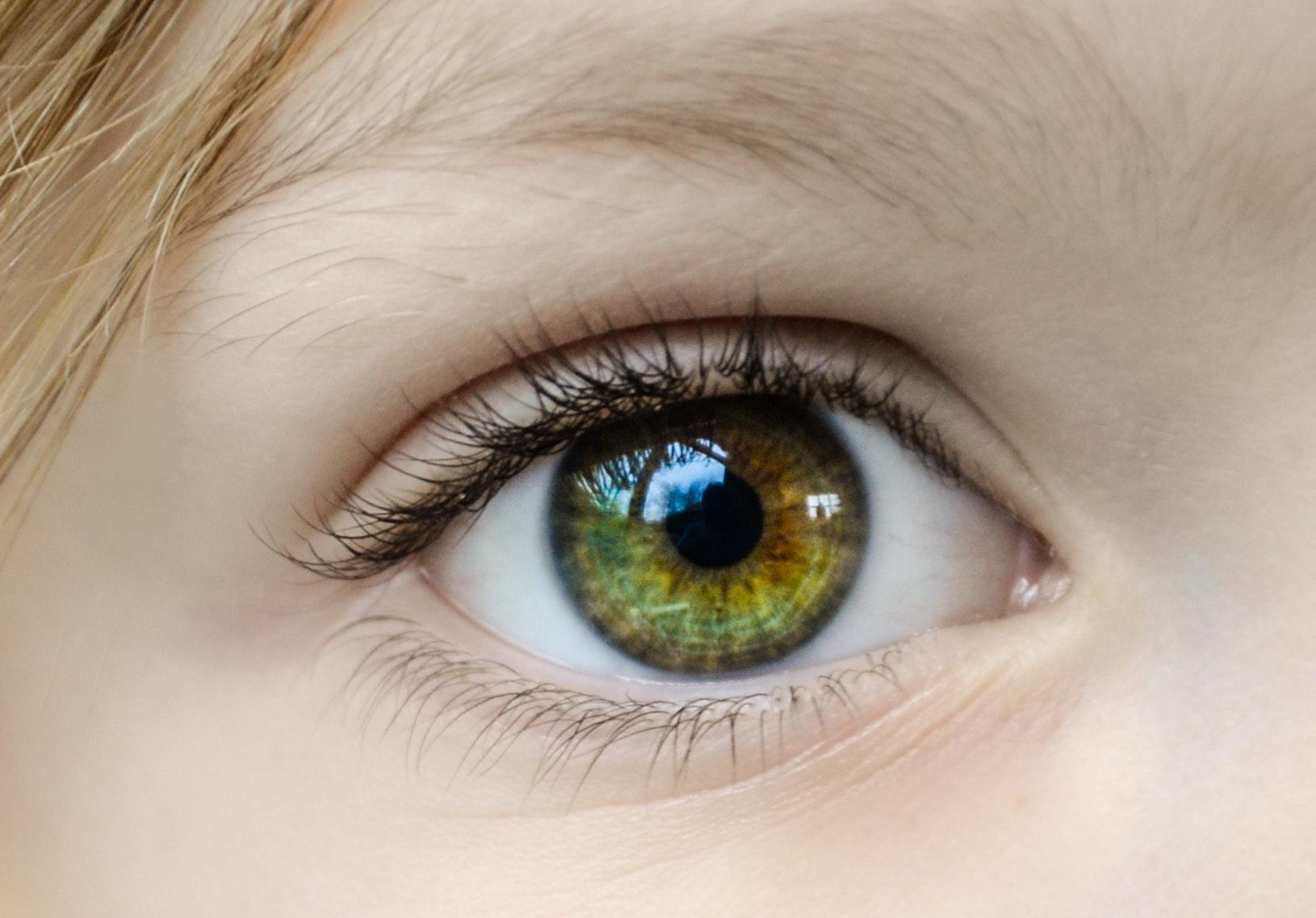Closeup Photo of Human Eye, Close-up, Person, Woman, Vision, HQ Photo