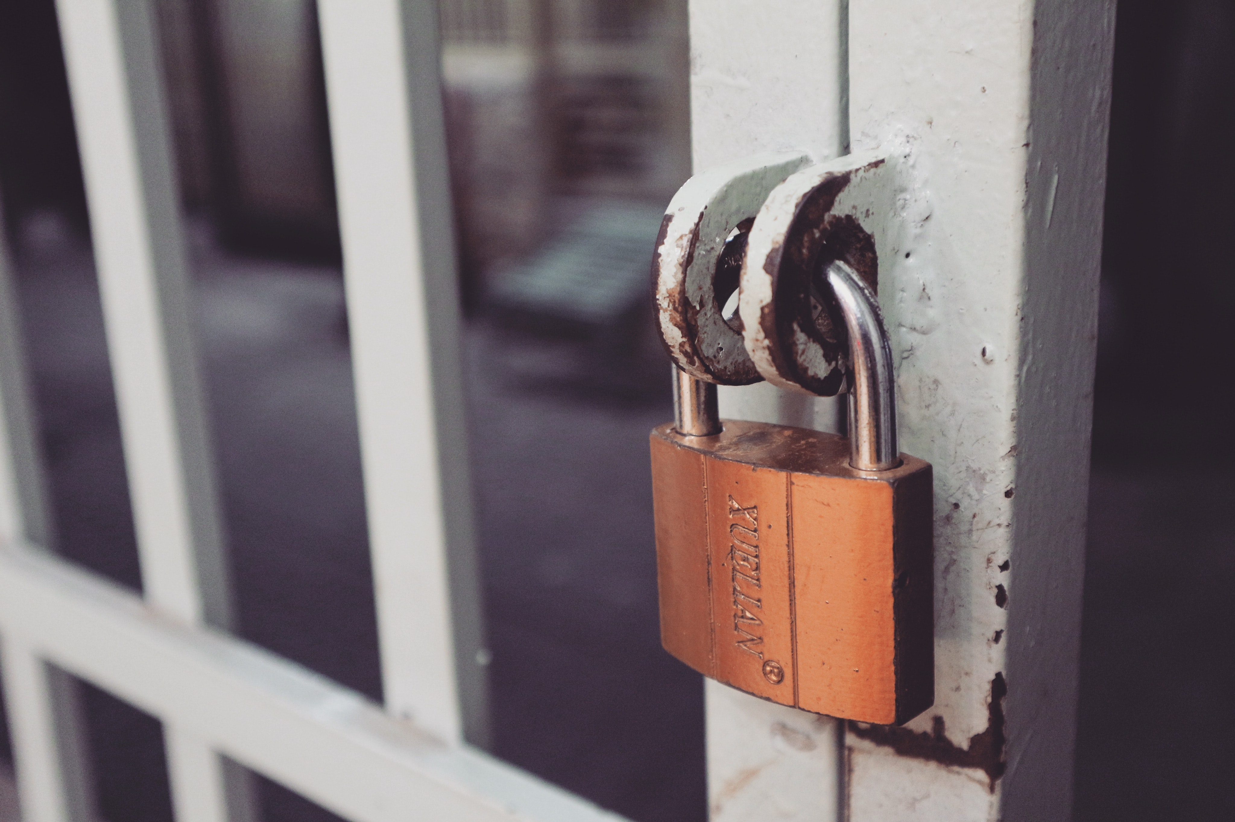 Closeup Photography of White Gate With Brass-colored Padlock, Blur, Brass, Close -up, Closed, HQ Photo