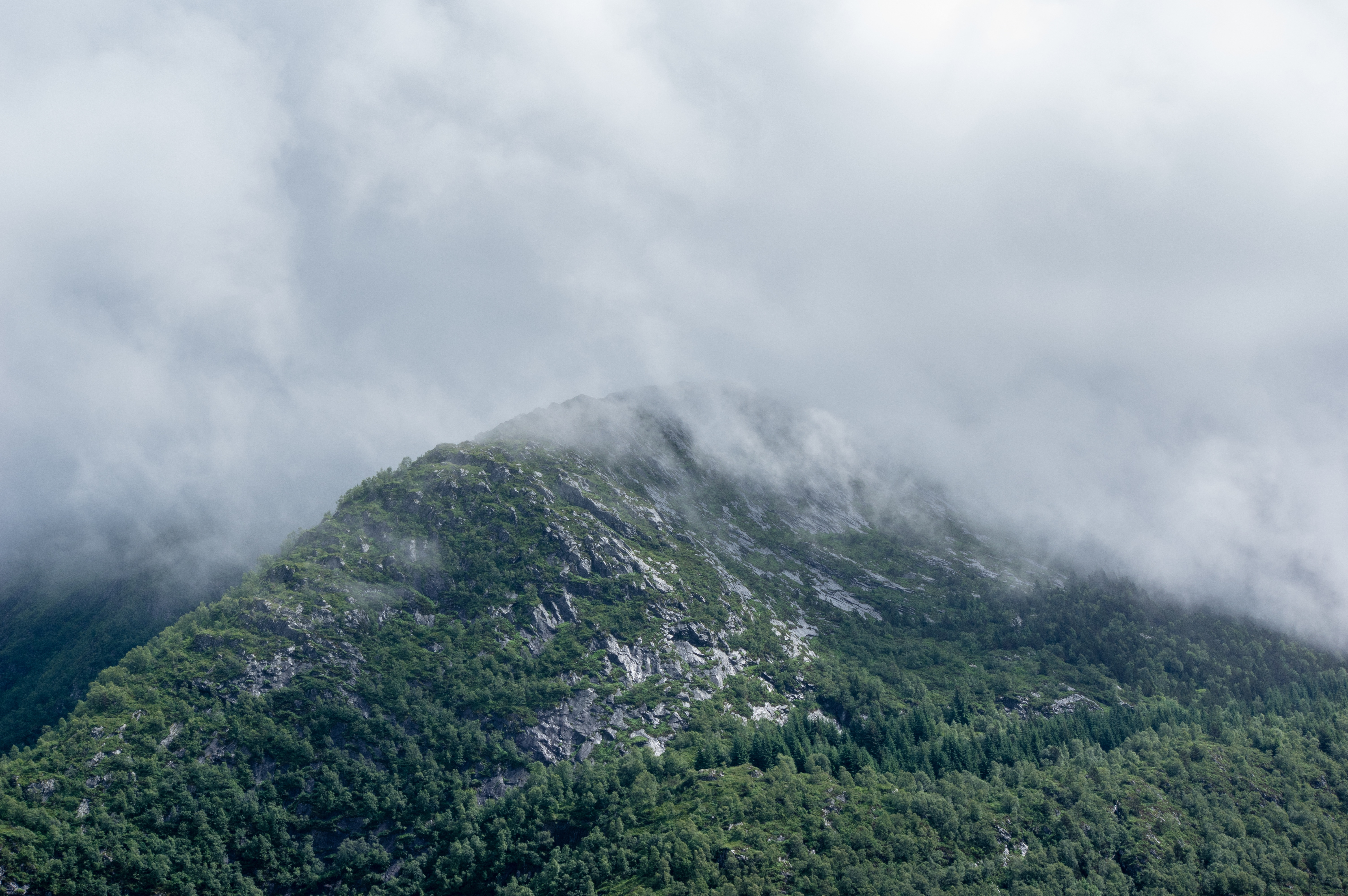 Cloudy Mountain, Altitude, Cloud, Cloudy, Forest, HQ Photo