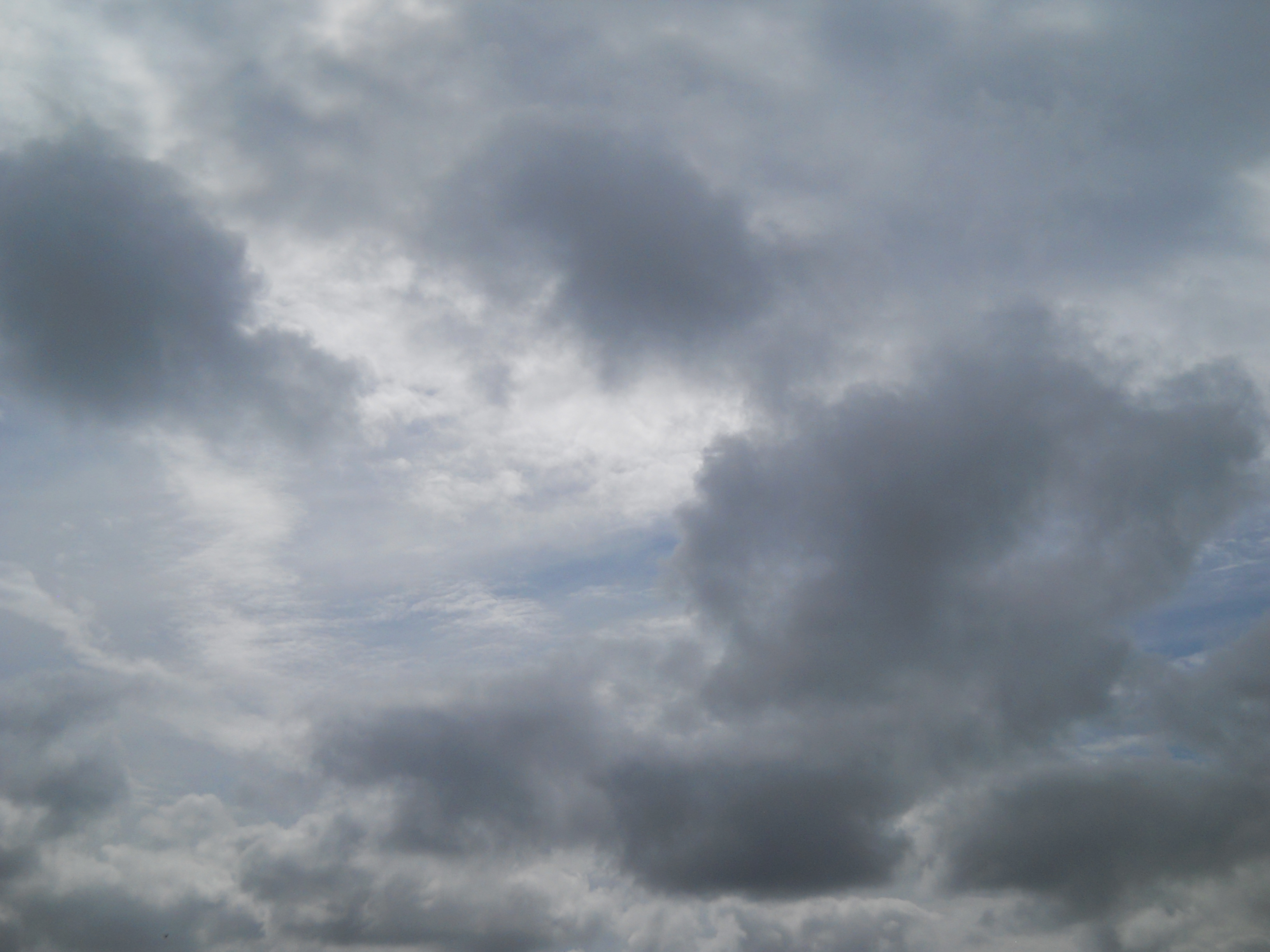 Free photo: Cloudy sky - Blue, Clouds, Skies - Free ...