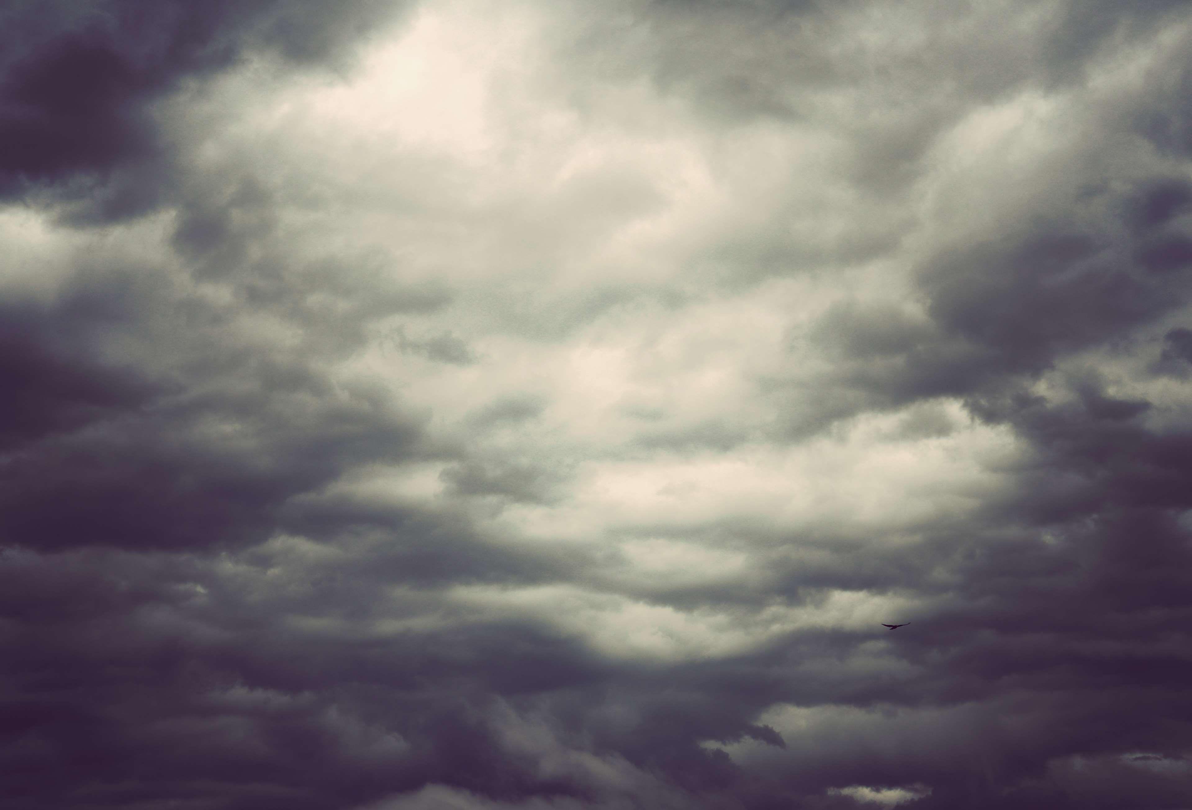 after the rain #clouds #cloudy sky #crow #dark sky #sky 4k ...