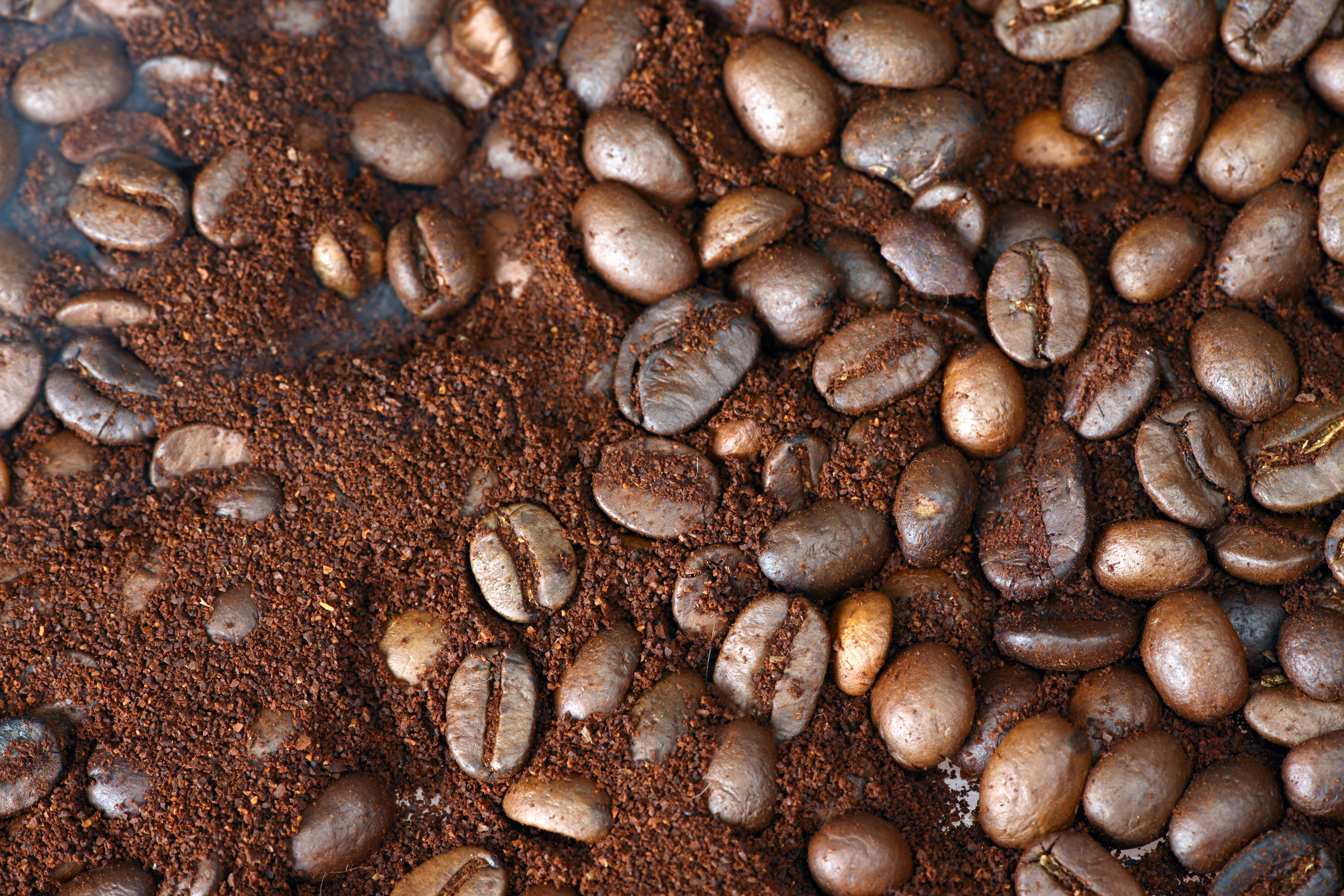coffee beans, Abstract, Objects, Ingredient, Large, HQ Photo