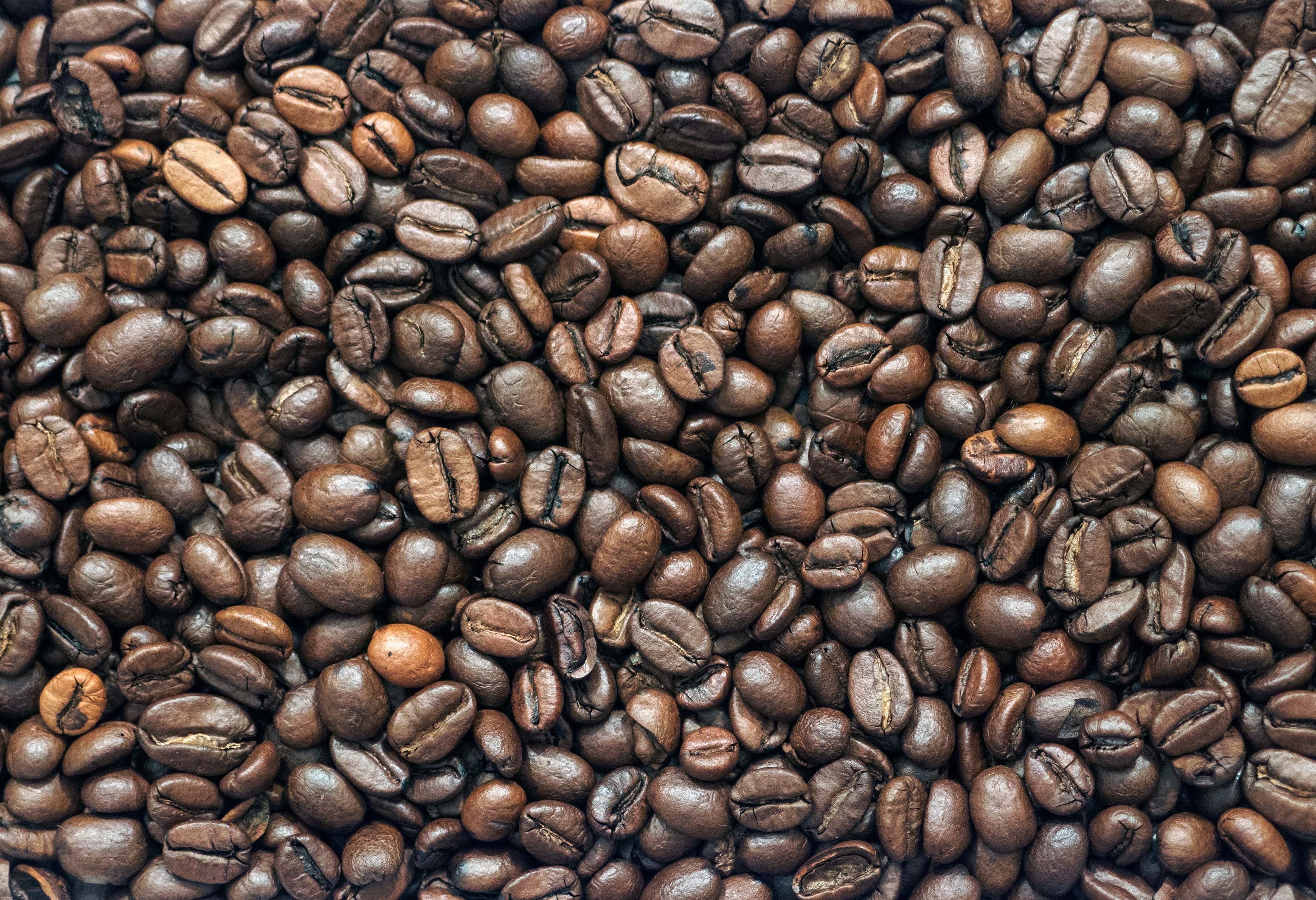Free Image: Coffee Beans | Libreshot Public Domain Photos