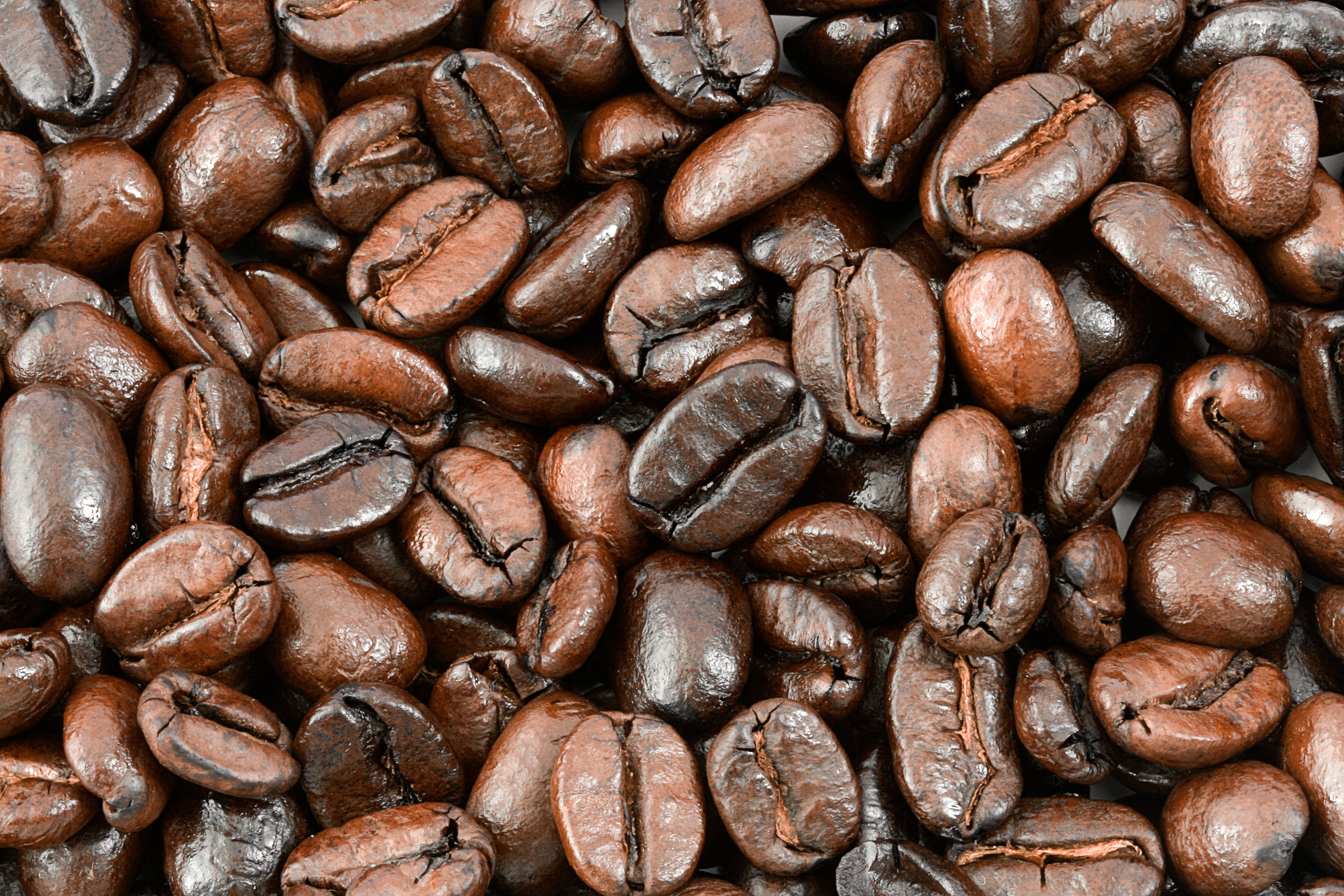 Coffee beans texture photo
