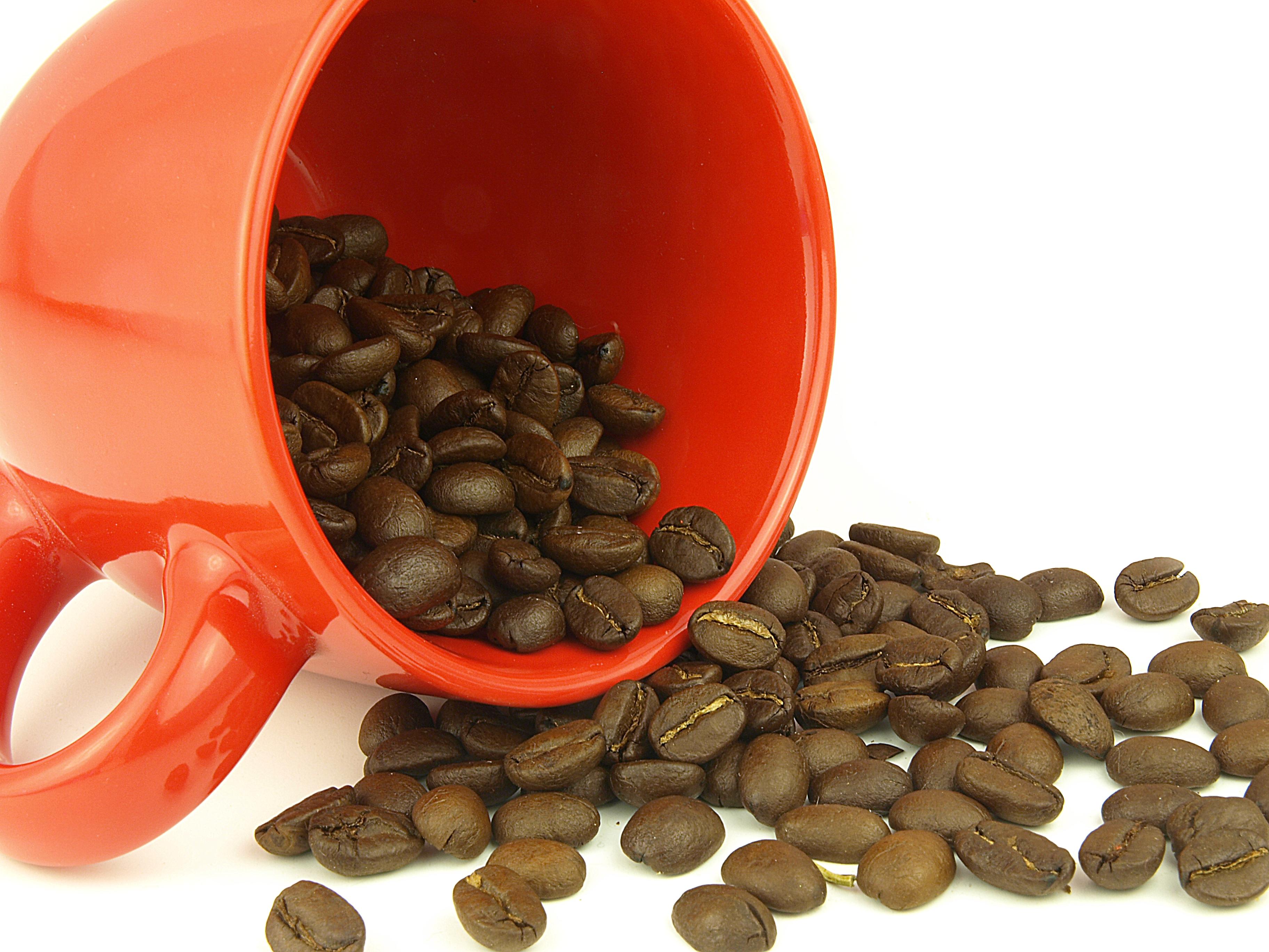 Coffee beans very close photo
