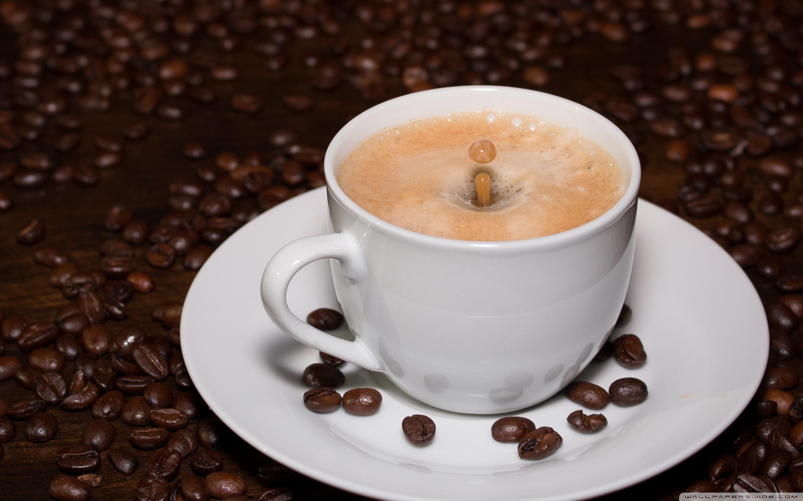 Cup of Coffee Drop Splash ❤ 4K HD Desktop Wallpaper for 4K Ultra HD ...