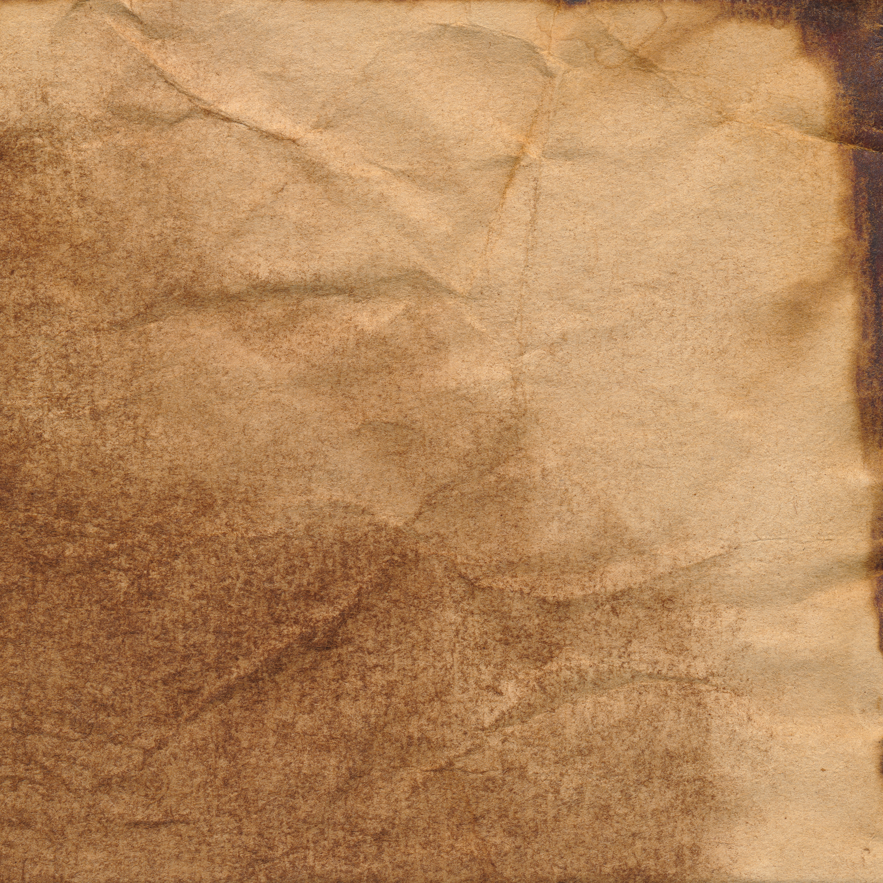 Coffee stained paper texture photo