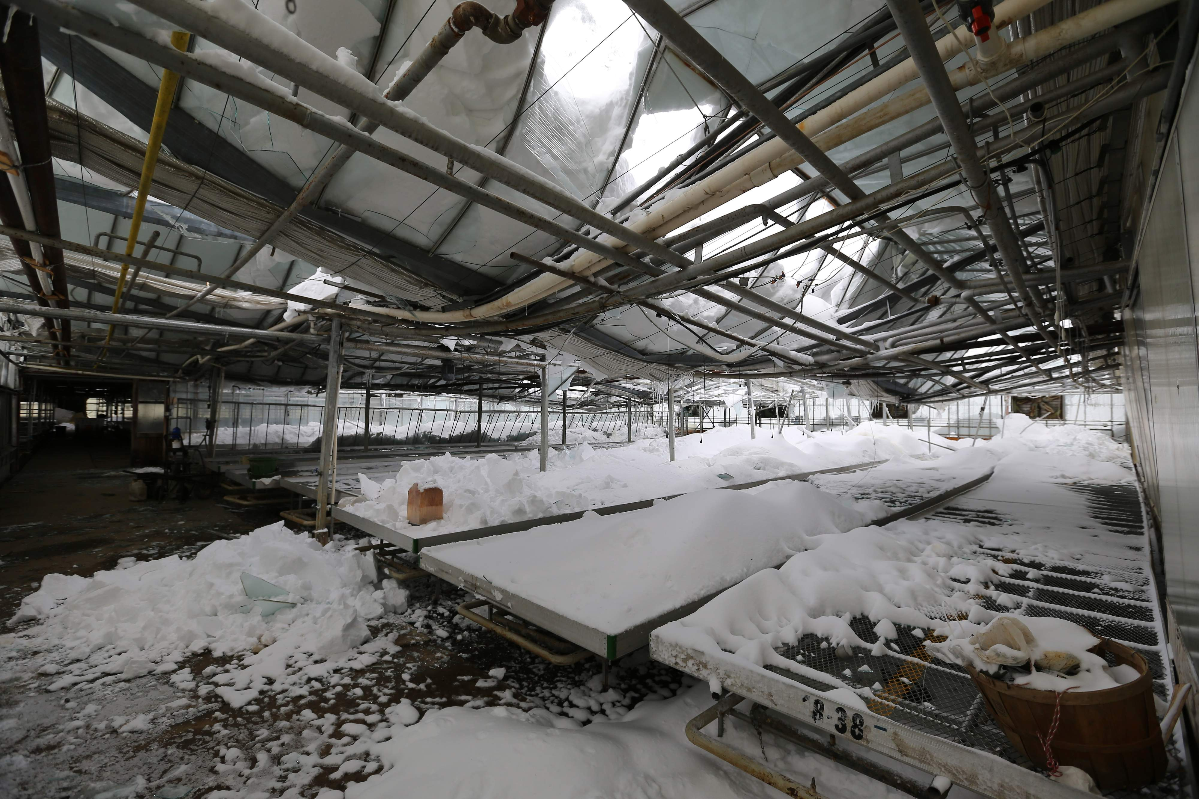 Roofs collapse under epic Buffalo snow | tbo.com