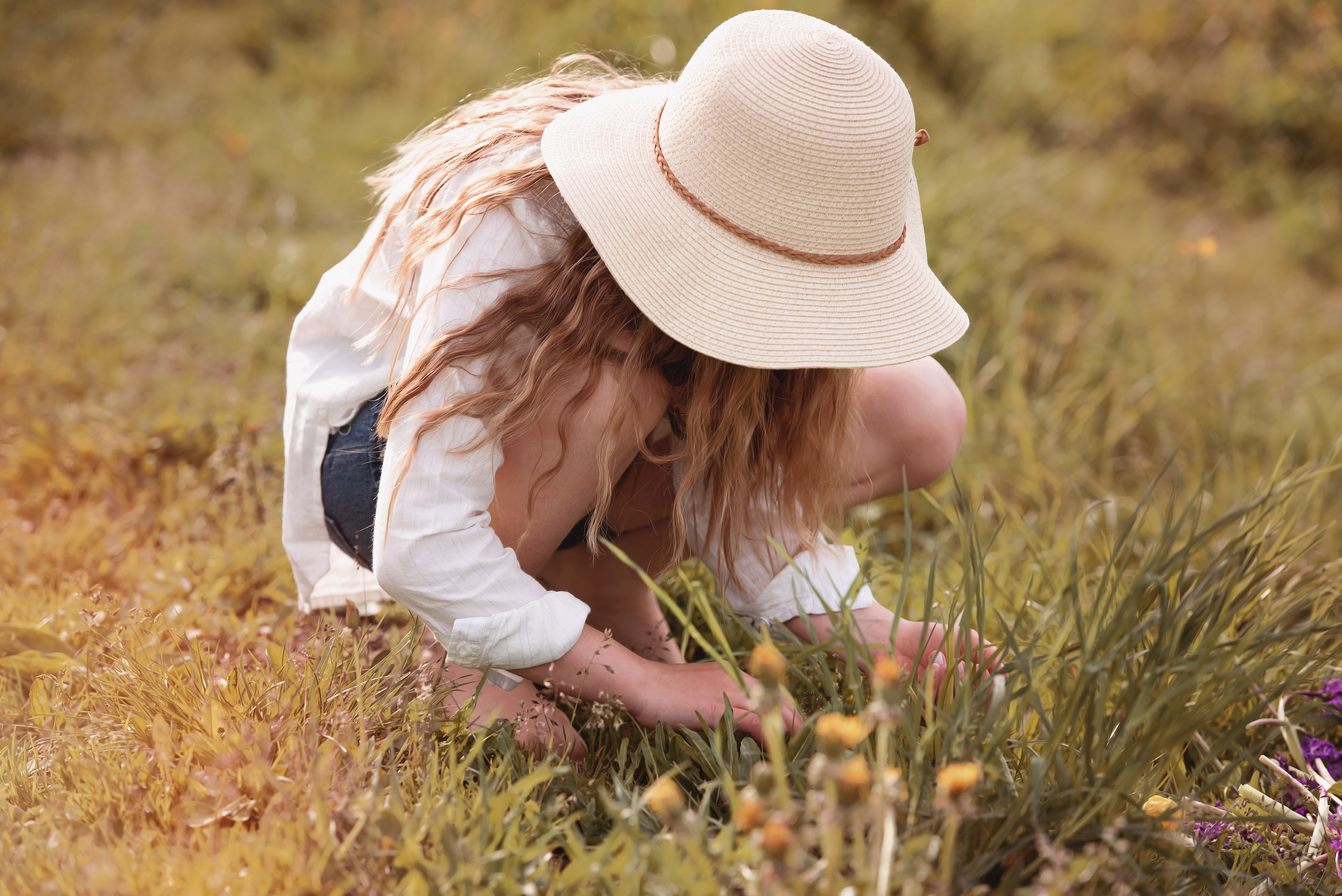 Collecting Flowers, Activity, Blonde, Collect, Field, HQ Photo