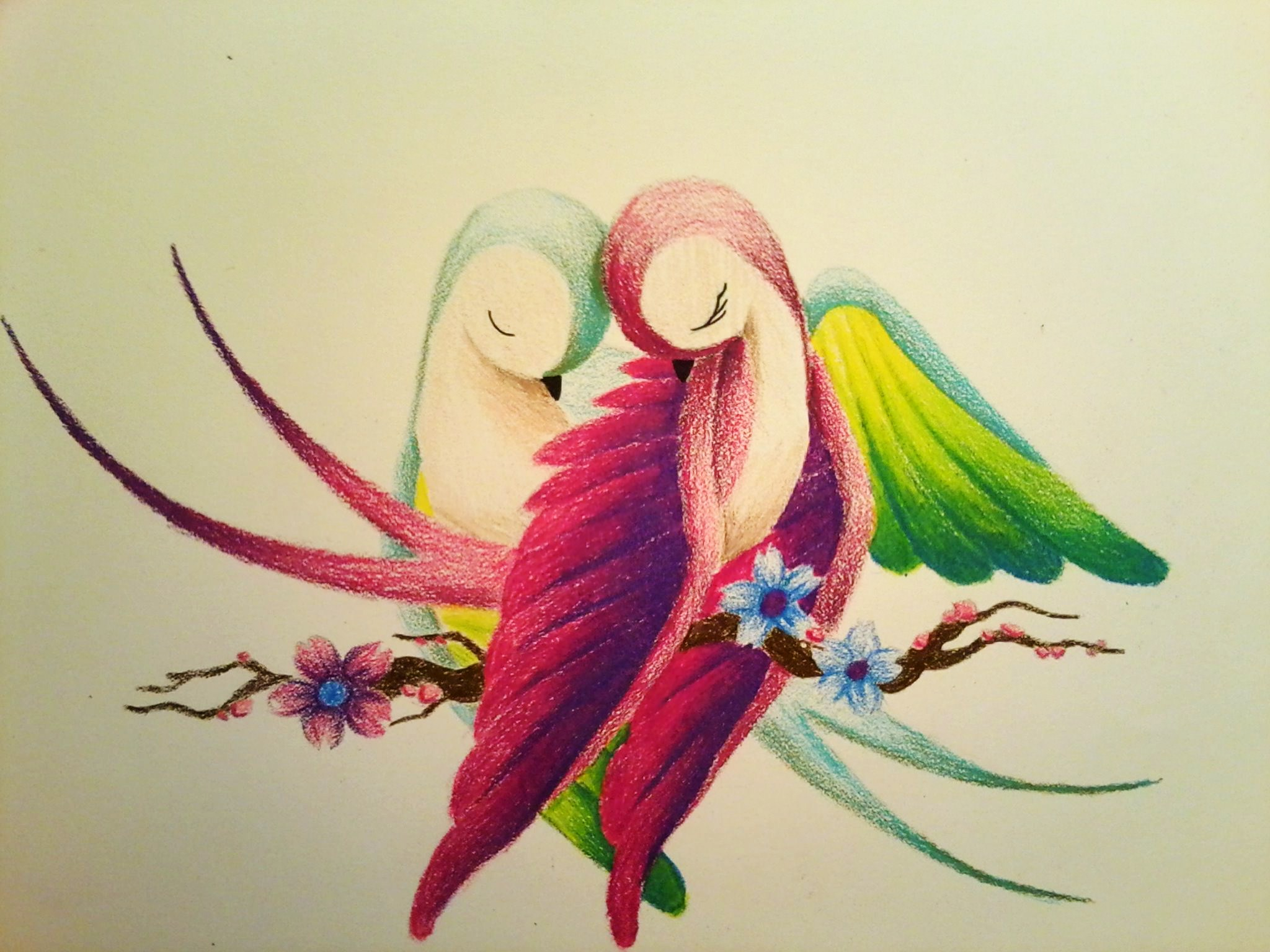 Free Photo Colored Love Bird Bird Colored Green Free Download Jooinn