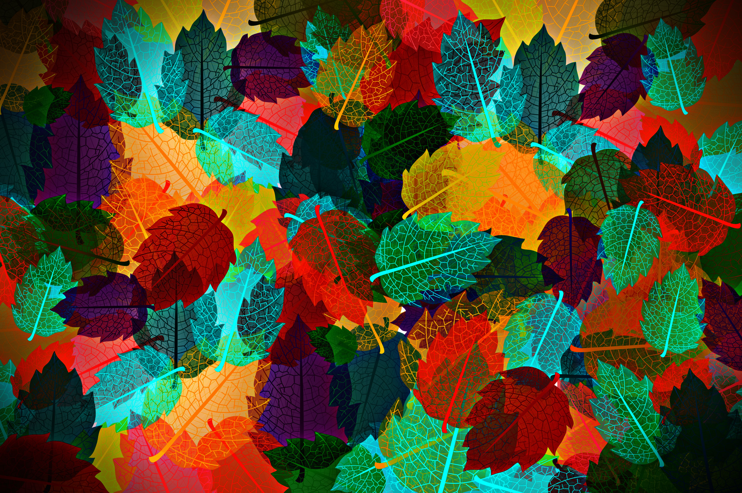 Colorful autumn leaves pattern photo