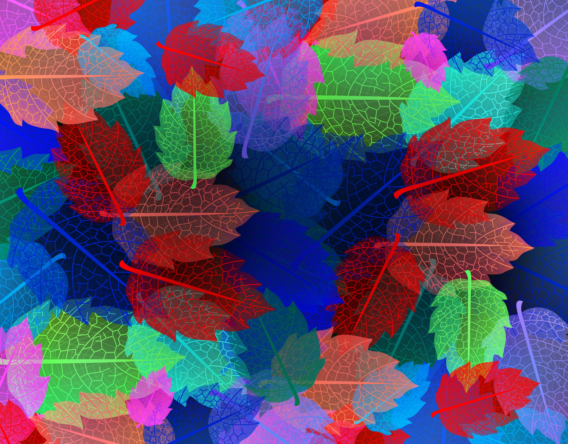 Colorful autumn leaves pattern, Abstract, Plant, Seamlessly, Seamless, HQ Photo