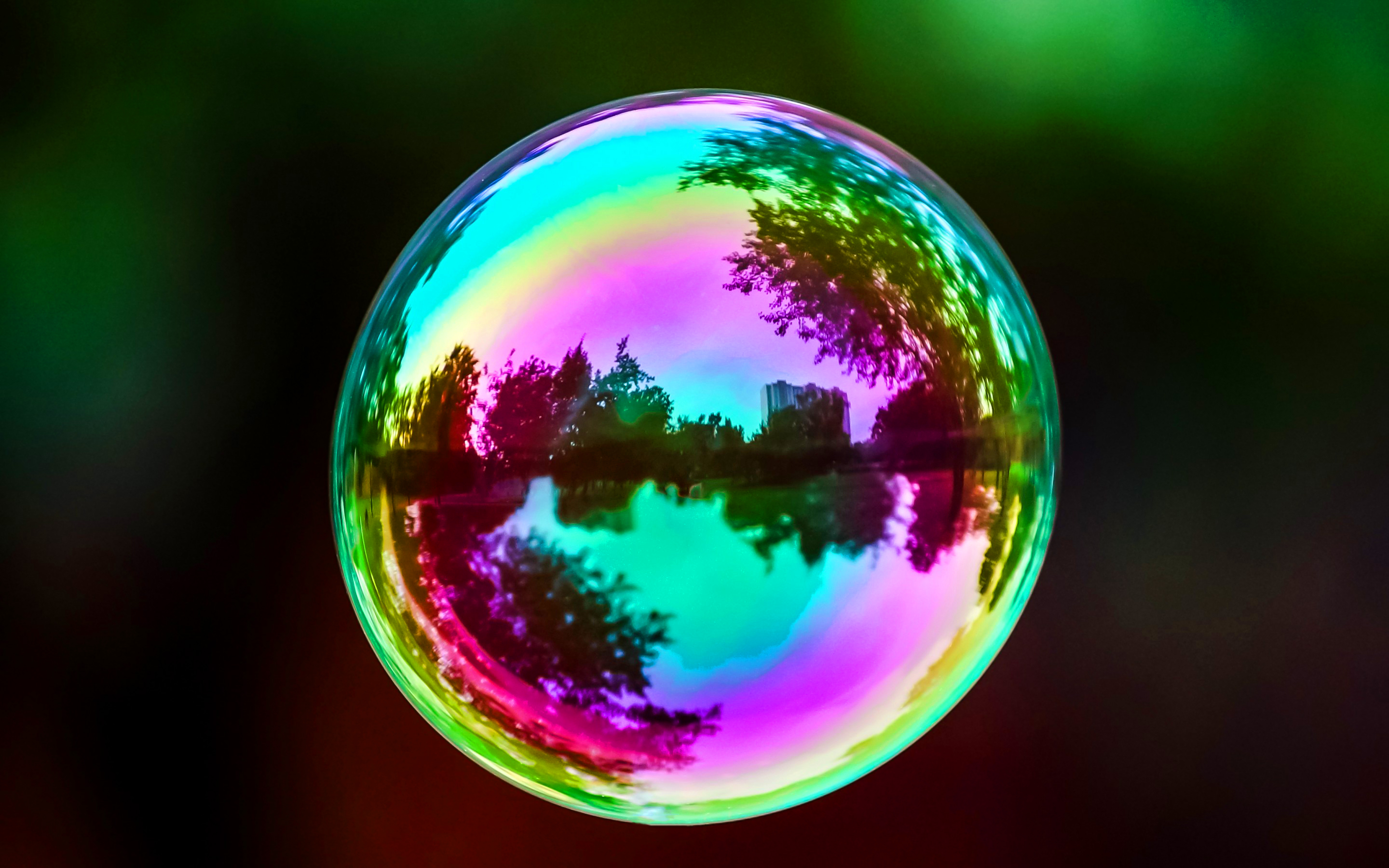 Colorful soap bubbles photo