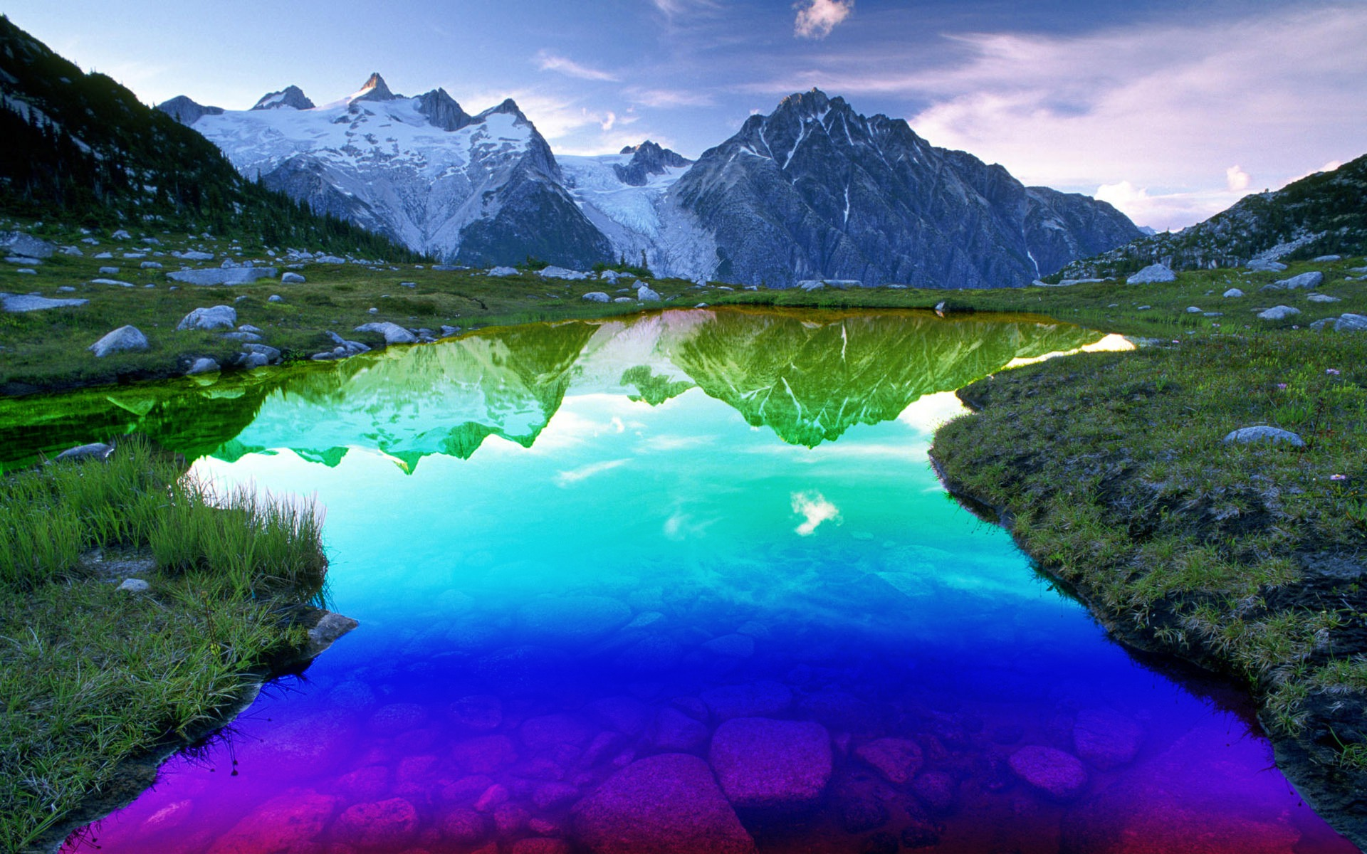 Colors of nature photo