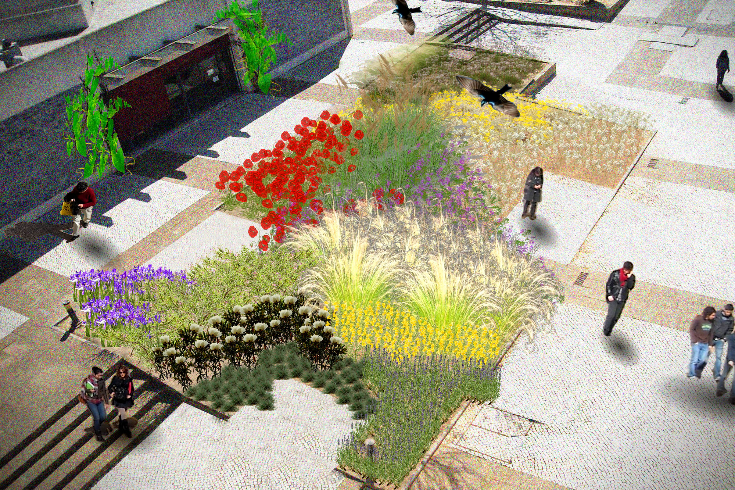 Conceptual landscape architecture planting plan photo