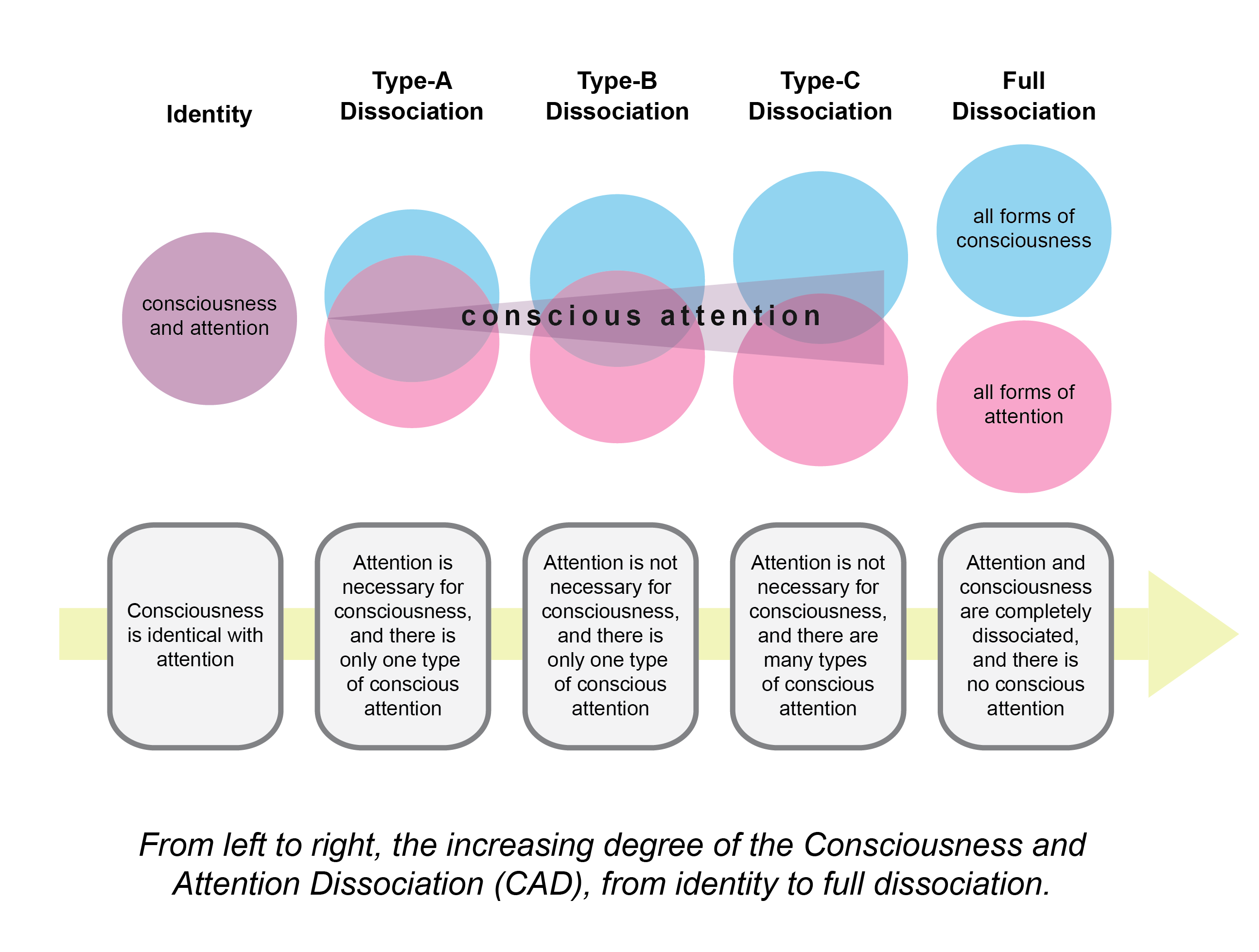 Consciousness, Attention, and Conscious Attention | Psychology Today