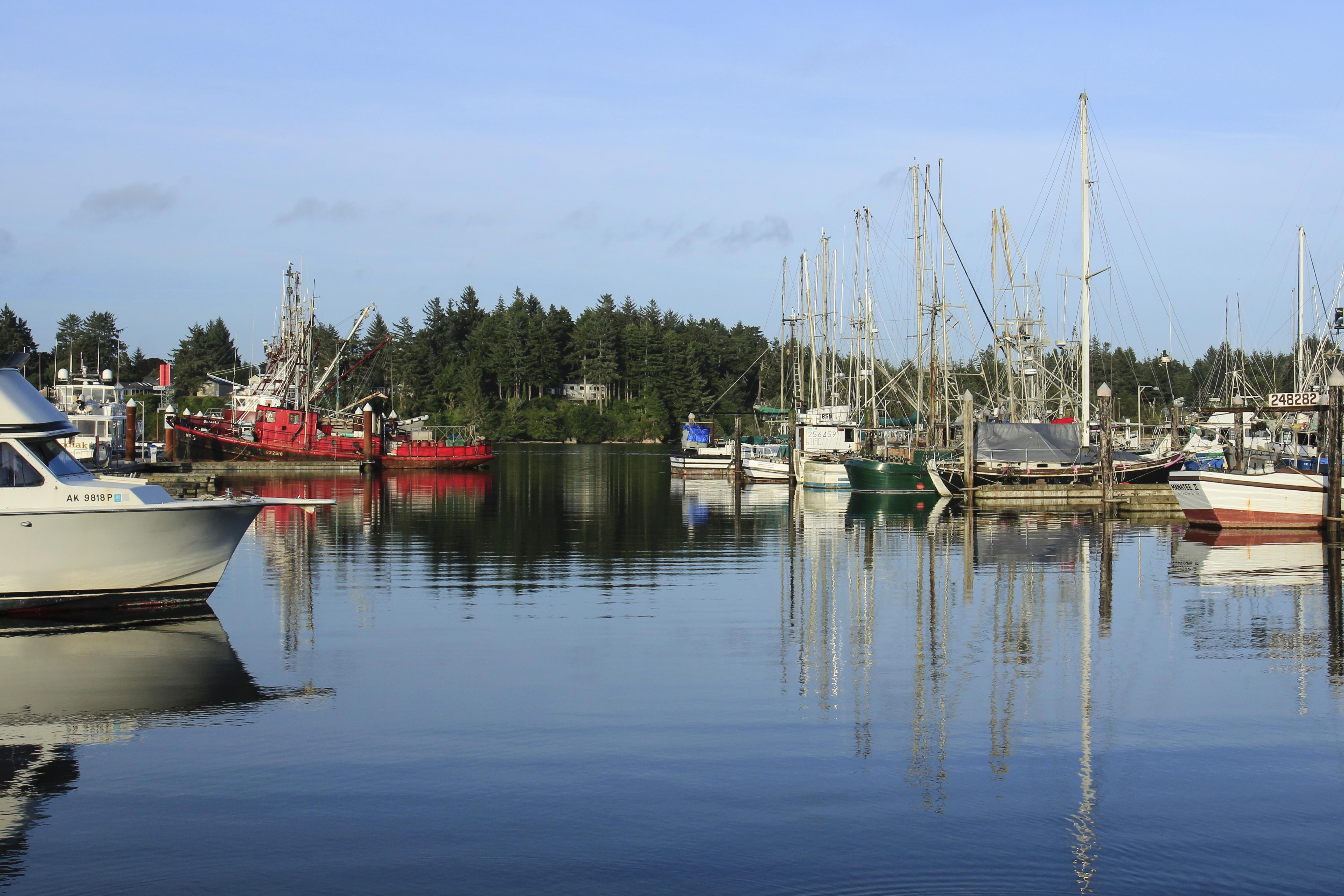 Coos bay, oregon, marina photo