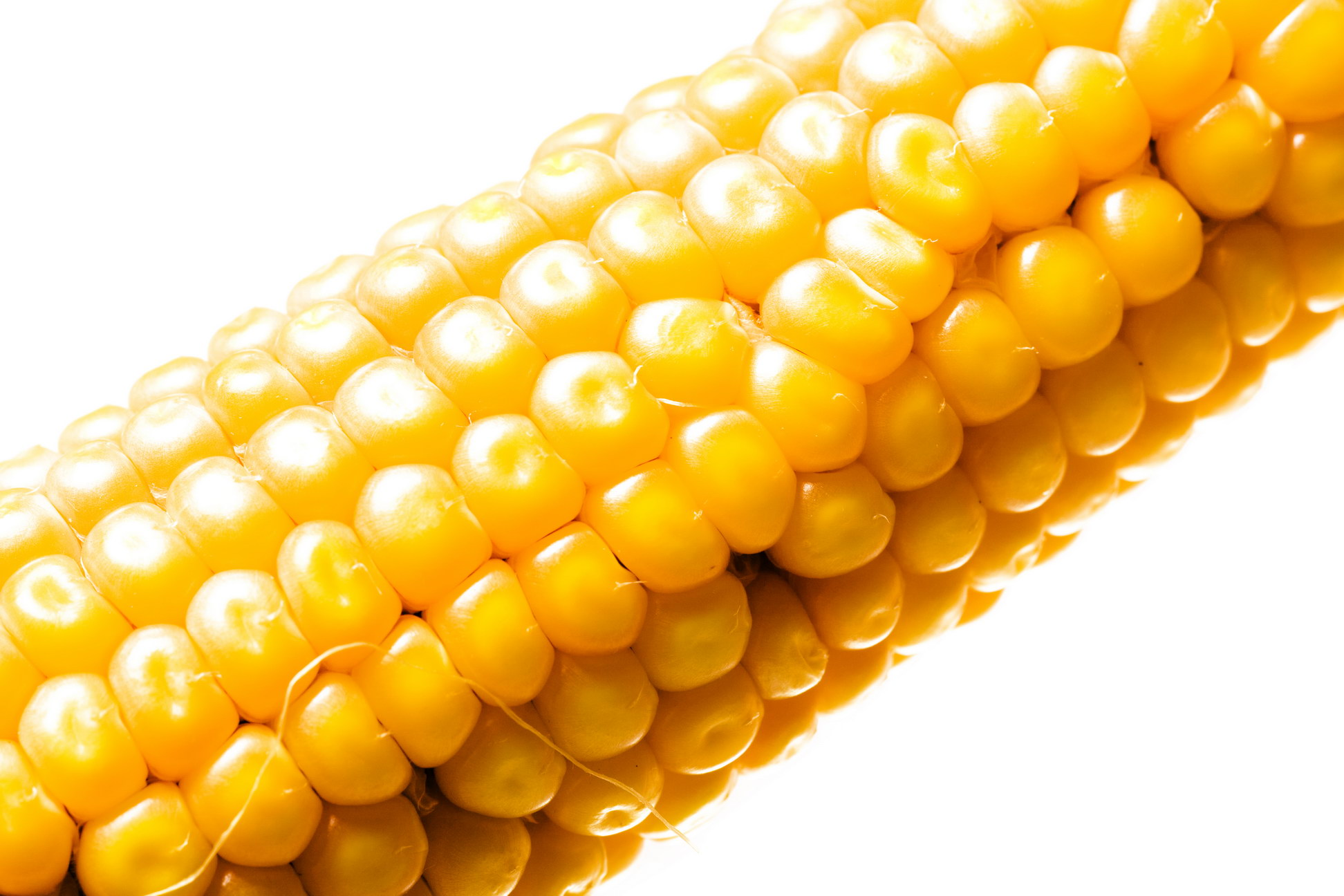 Corn, Agriculture, Macro, Maize, Meals, HQ Photo