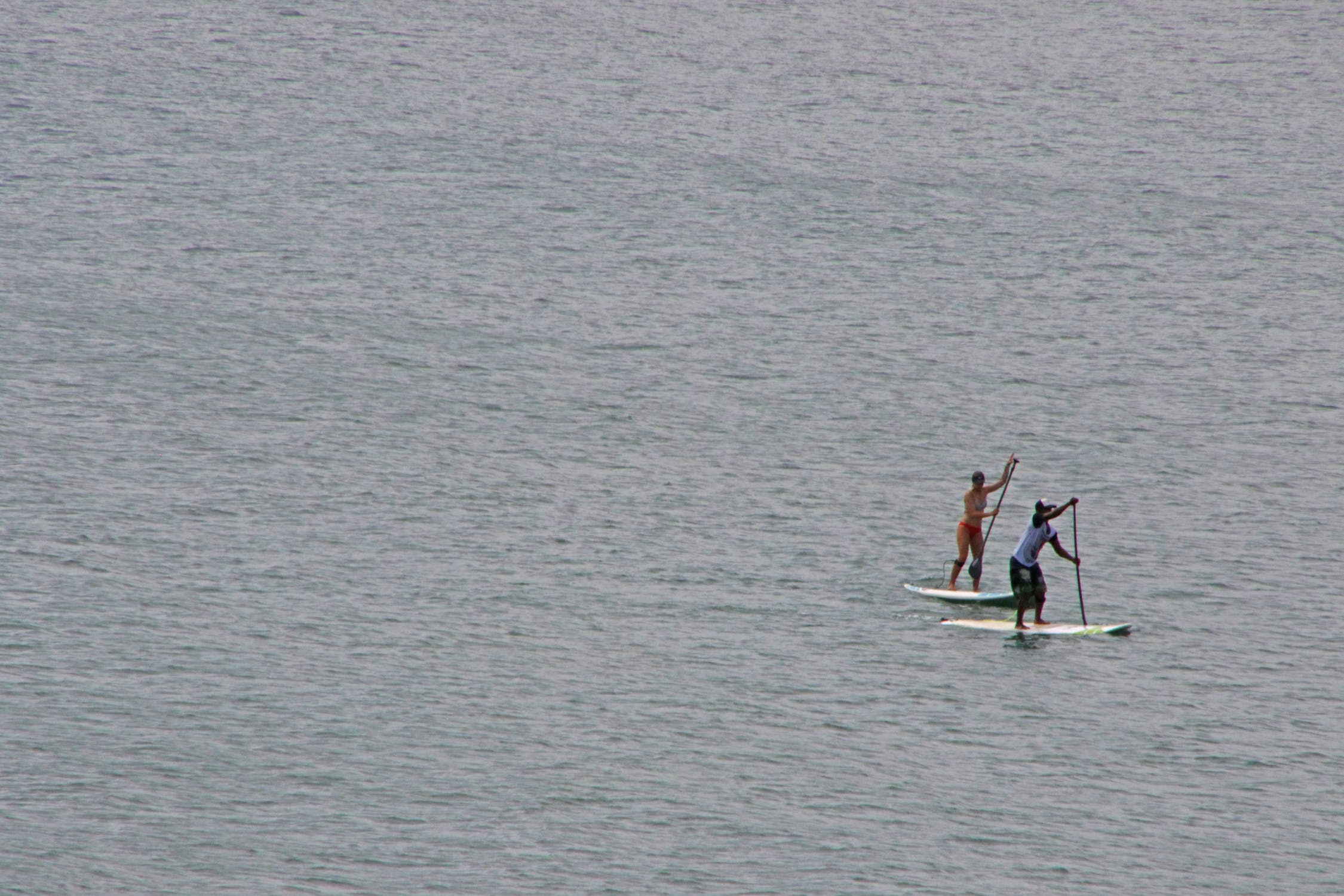 Couple of surfers in the sea photo